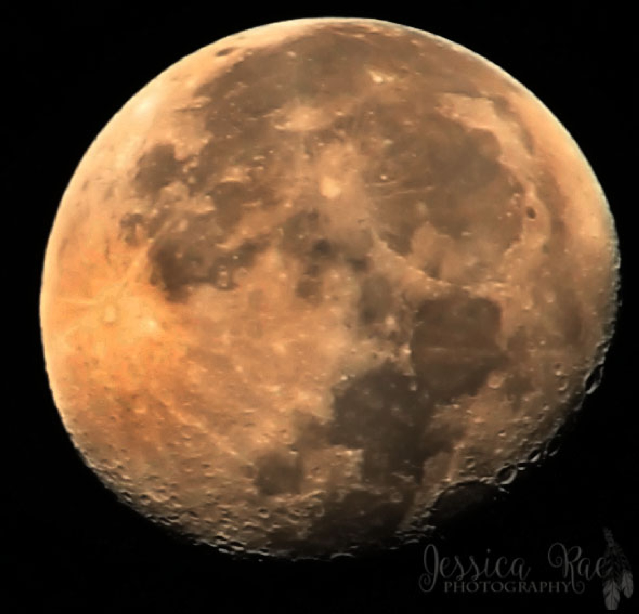 Full Moon by JessicaCowansPhotography