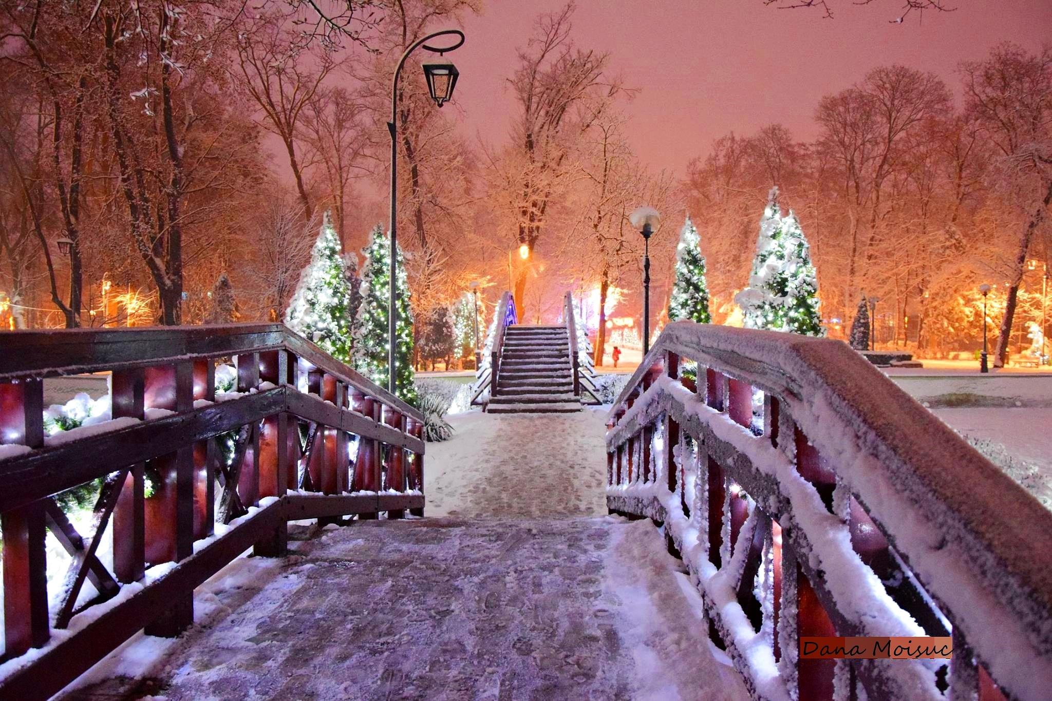 Winter in my city by Dana Moisuc