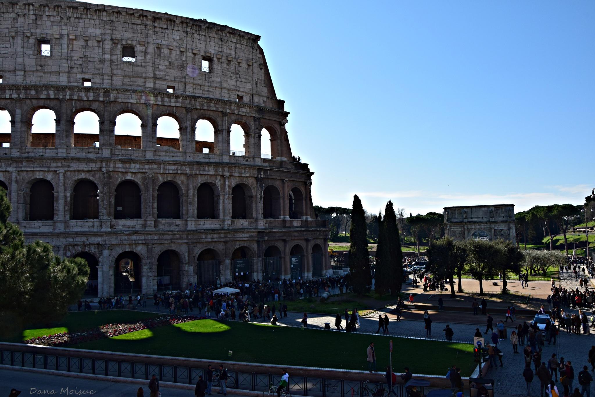 Rome ,Italy by Dana Moisuc