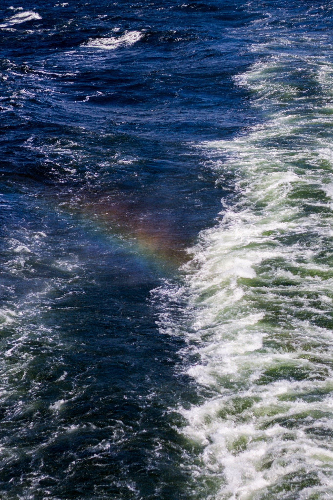 Rainbow in the Sea by Radina Ruseva