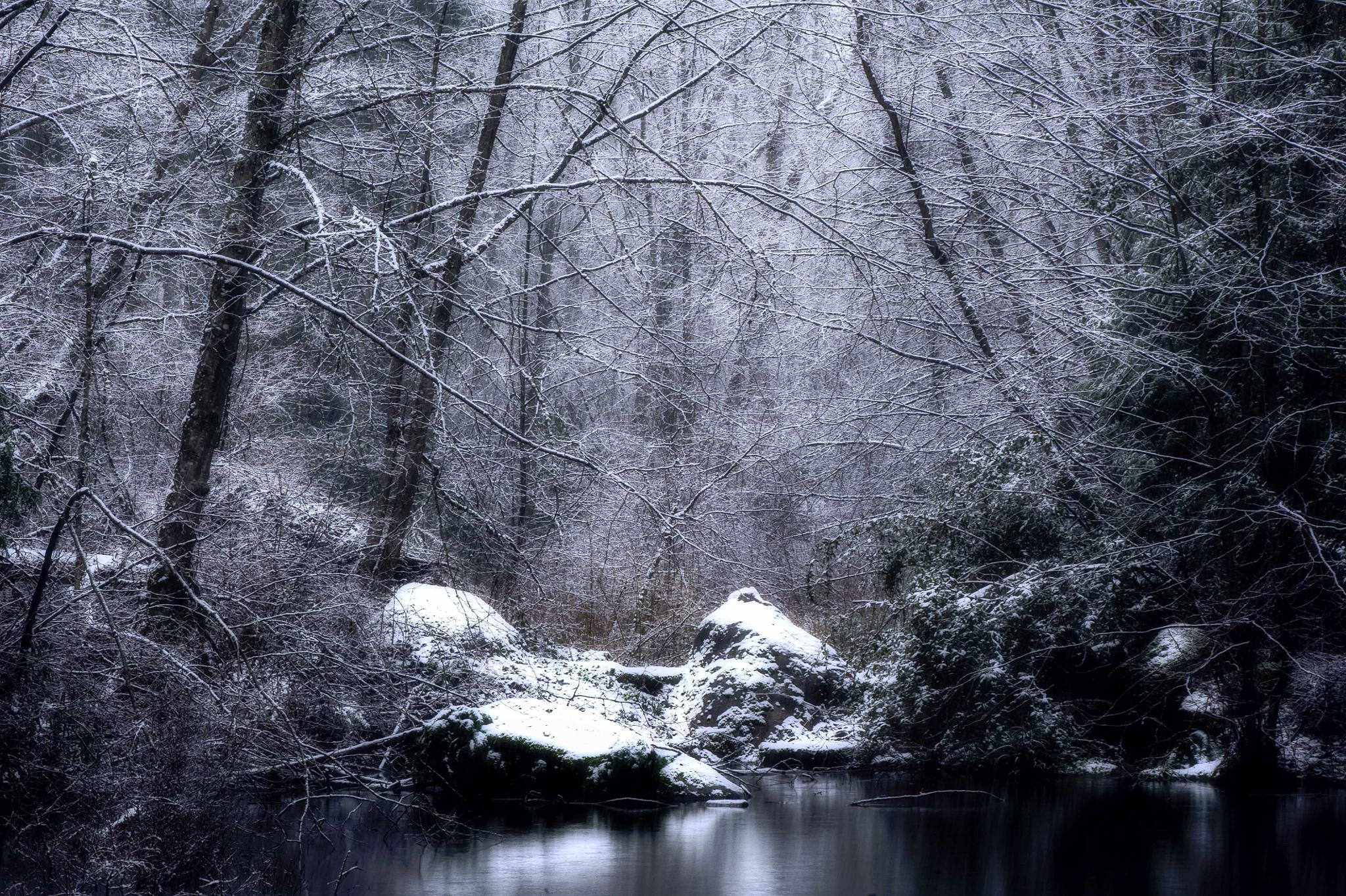 Ethereal Landscape - B&W by gldosa