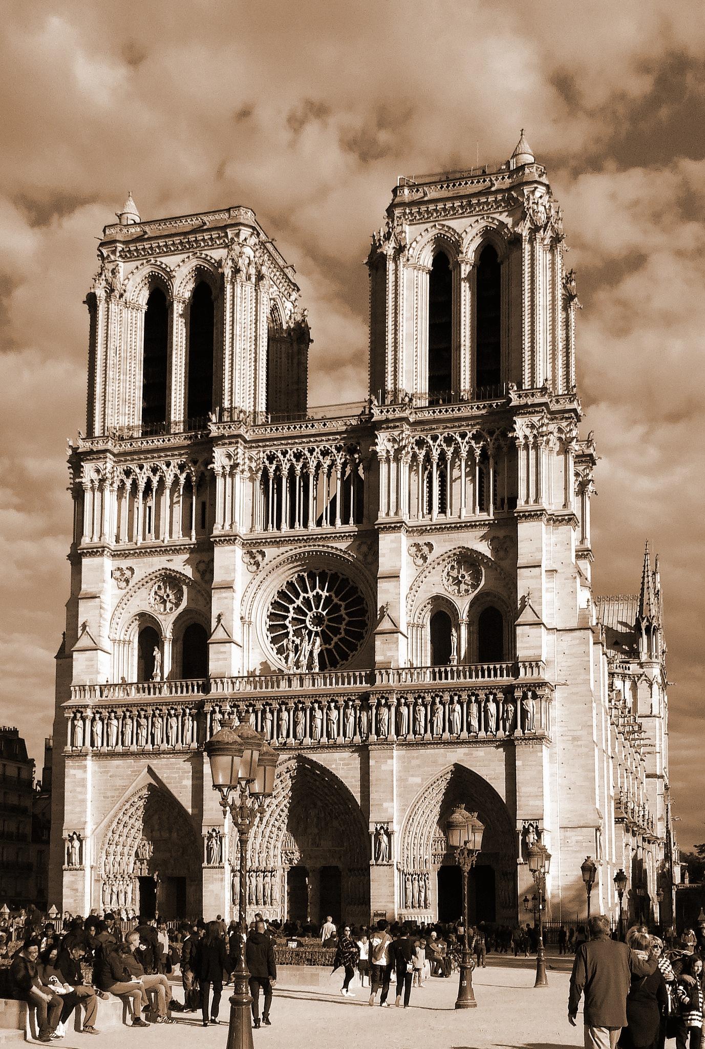 Je m'appelle Notre Dame by Dagmar Werth