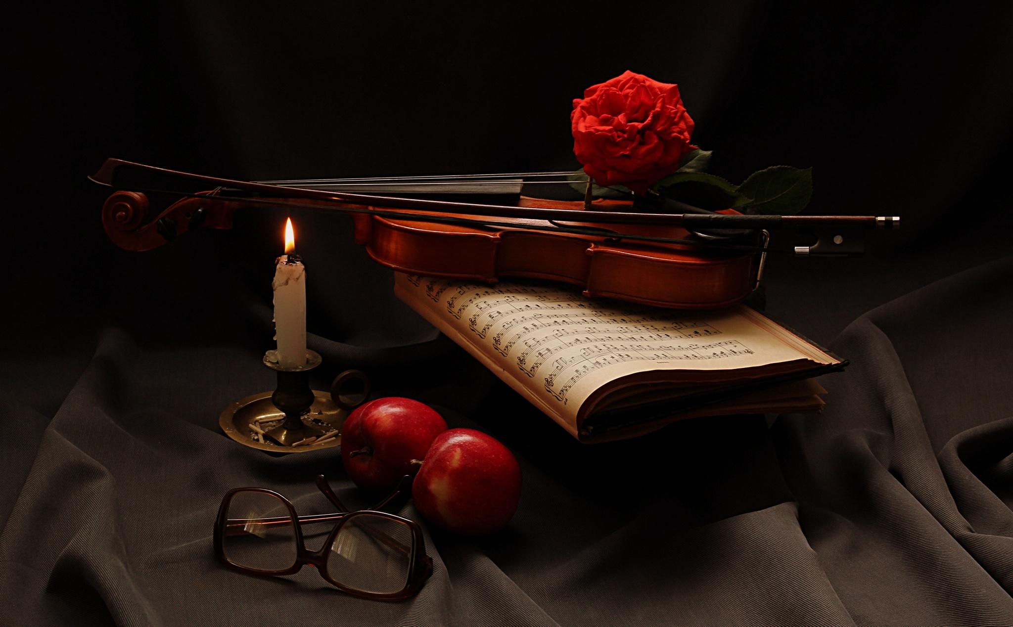 Red violin by Nicoleta