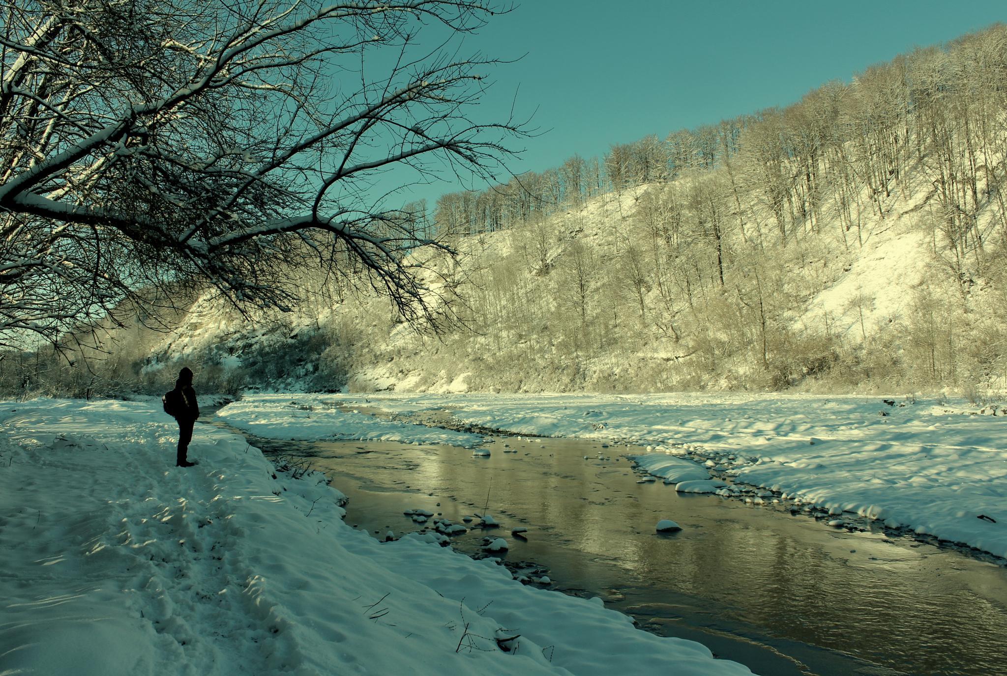 Winter by Nicoleta