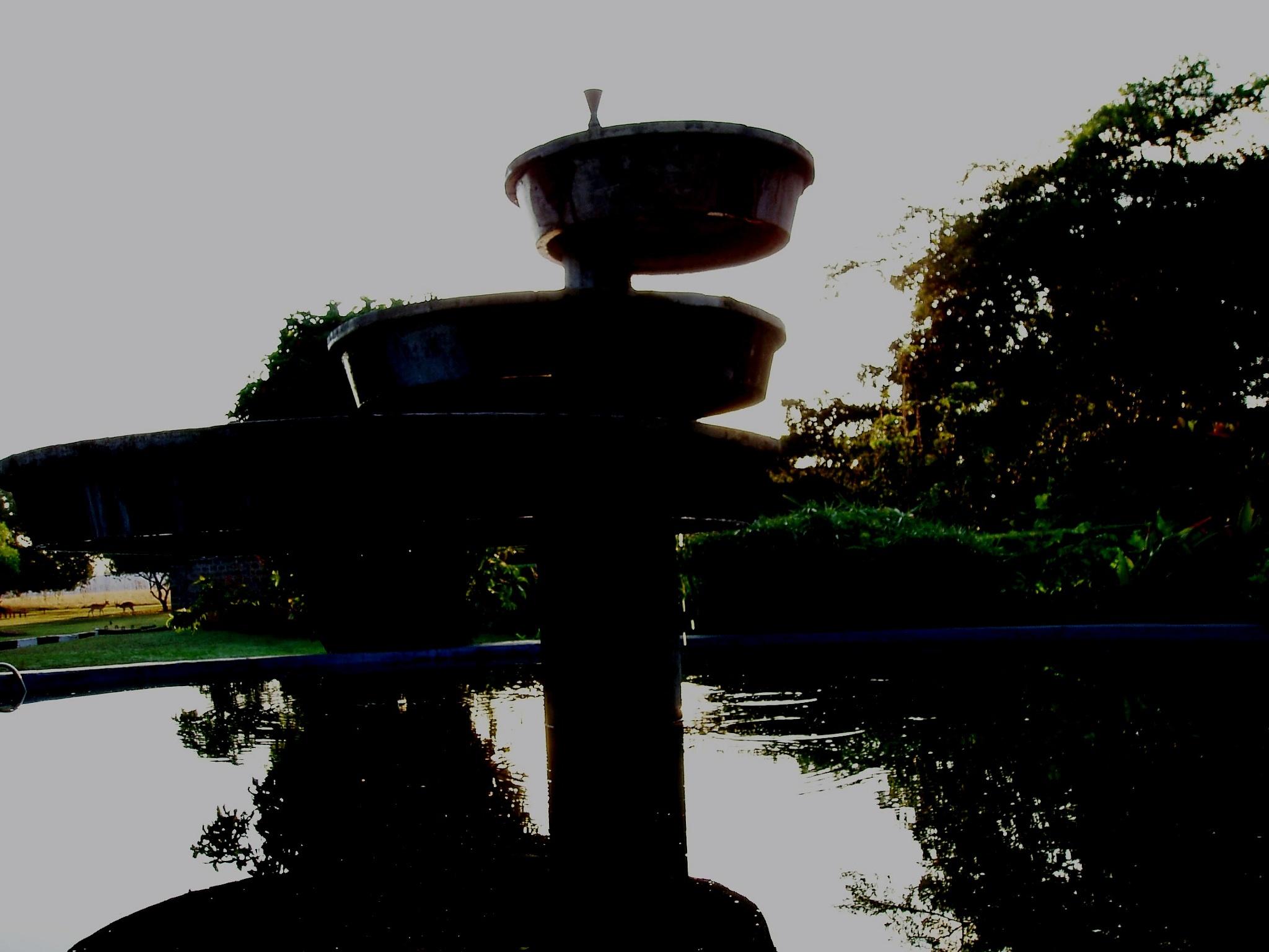 The silent fountain by Suresh Tewari