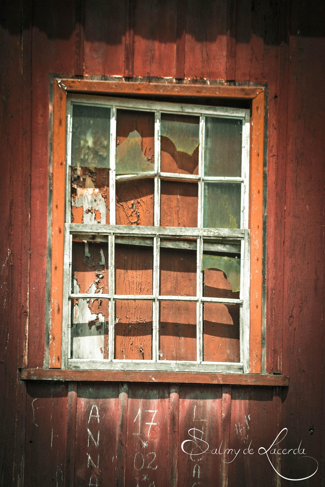 Window by Salmy Estrela de Lacerda