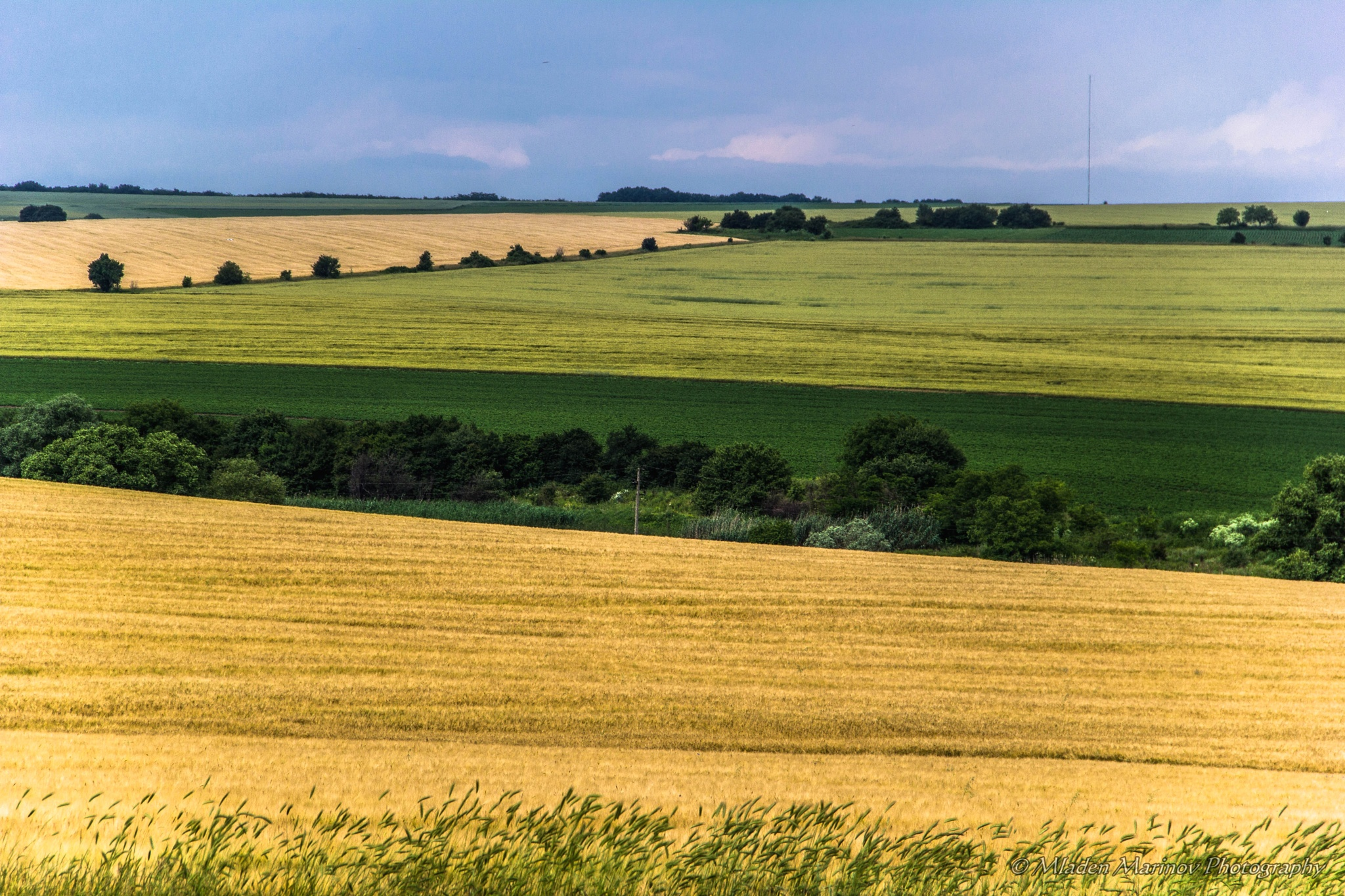 Photo in Landscape #earth #nature #fields #colours #lines