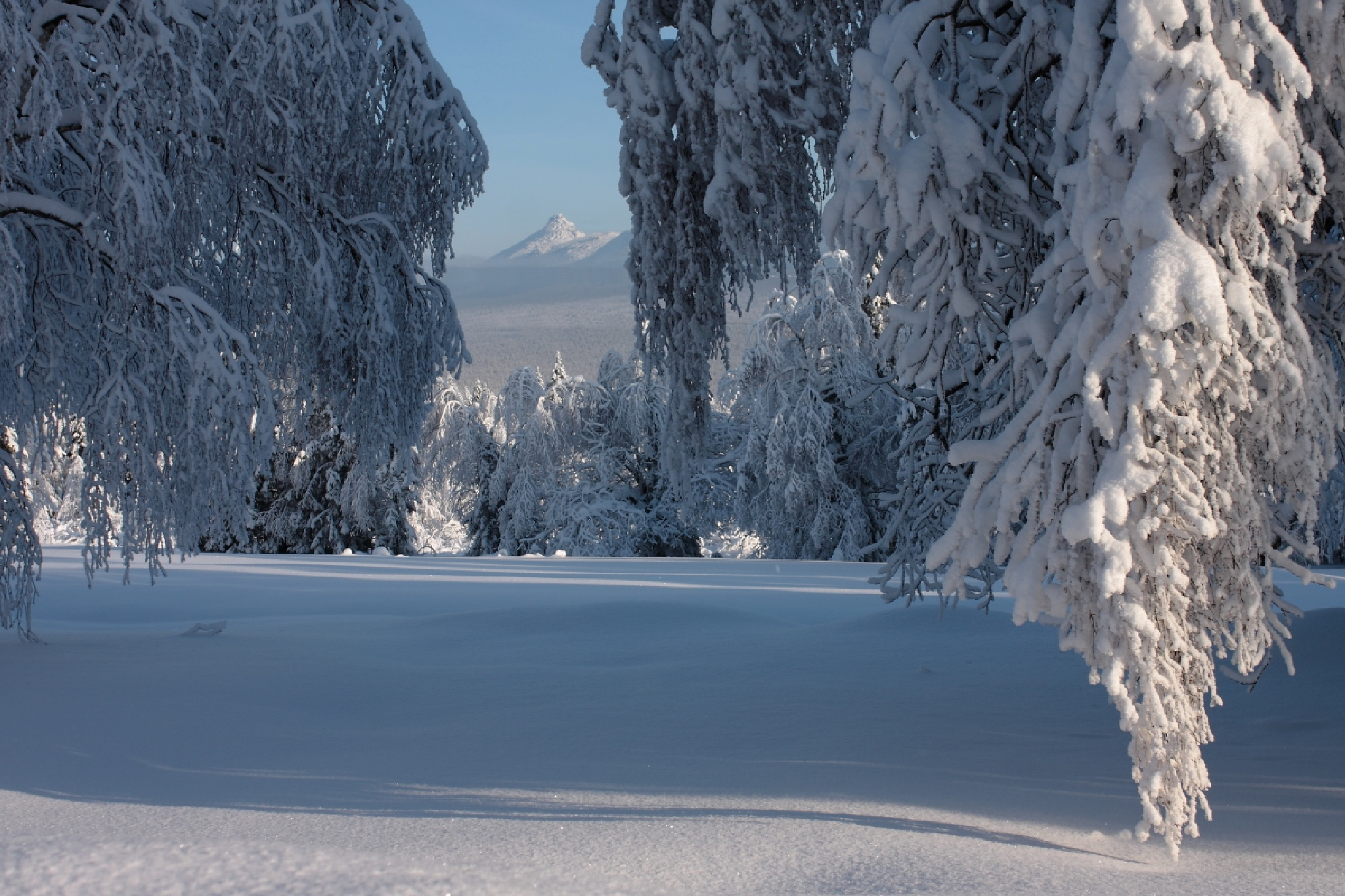 Winter in the mountains by Alexey Komarov