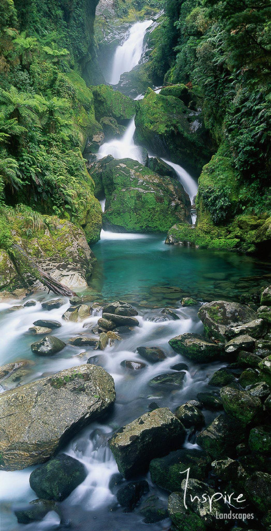 Mackay Falls, Milford Track, New Zealand by inspirelandscapes