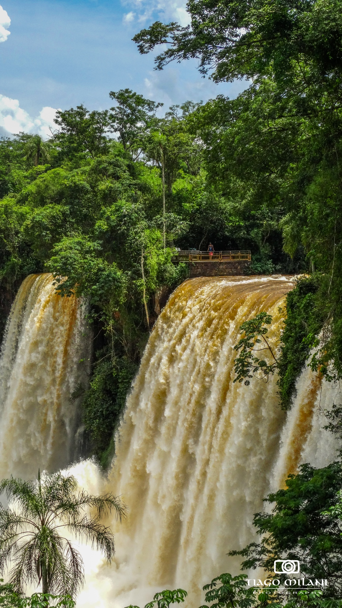 Iguazu Falls by Tiago Milani