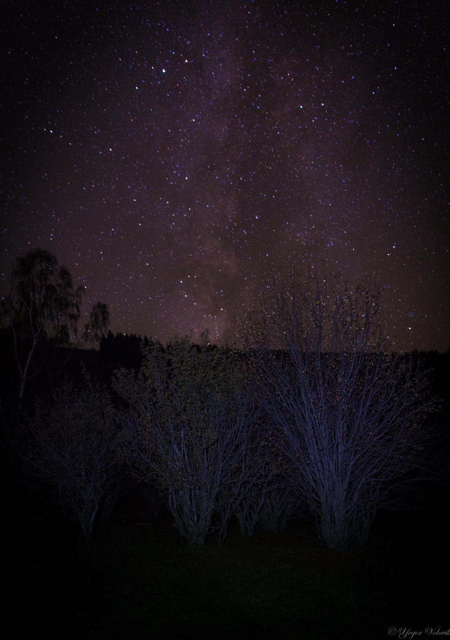 The Milky Way. by Yegor & Tanya