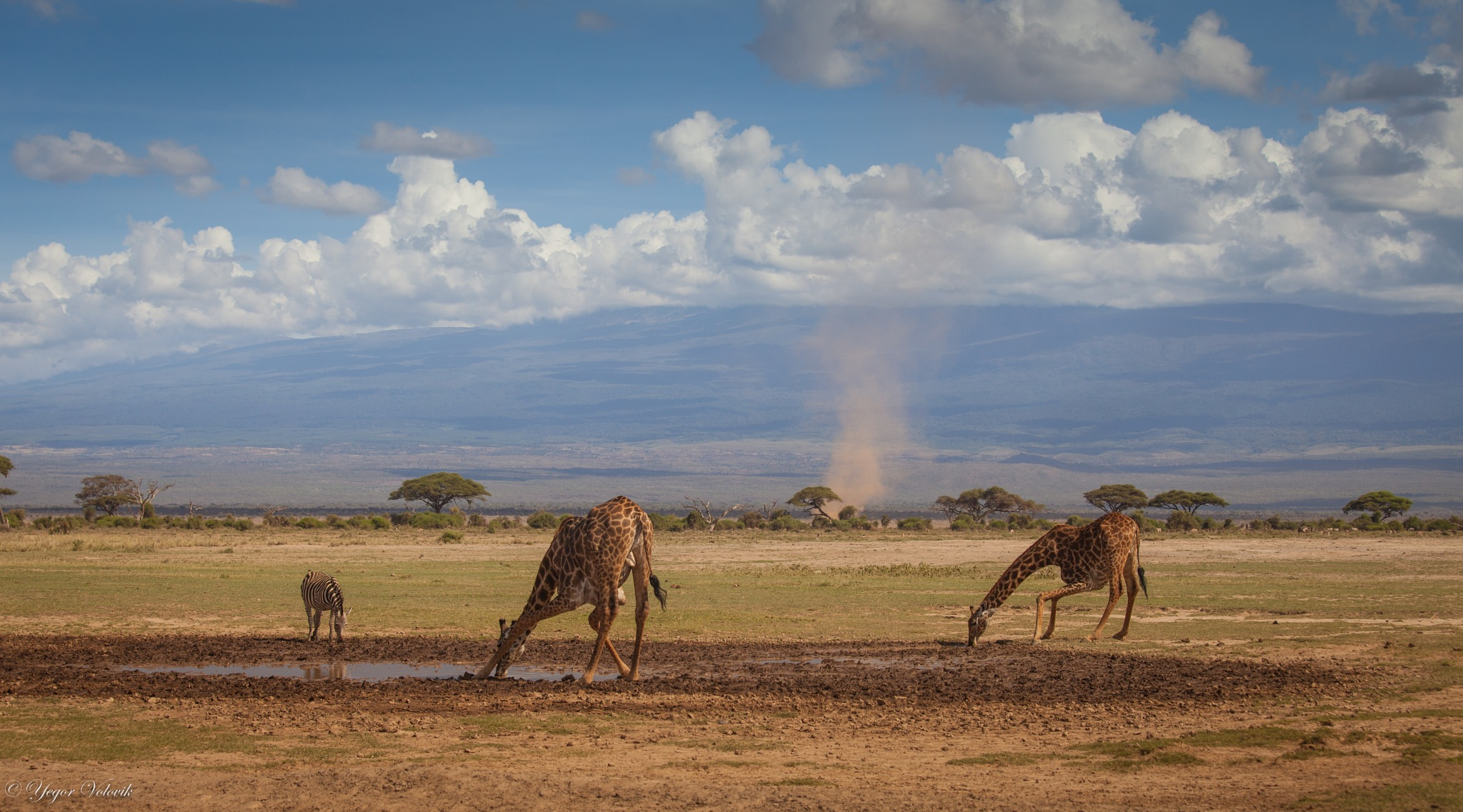 Drought in Africa... dust tornadoes and the last signs of water... by Yegor & Tanya