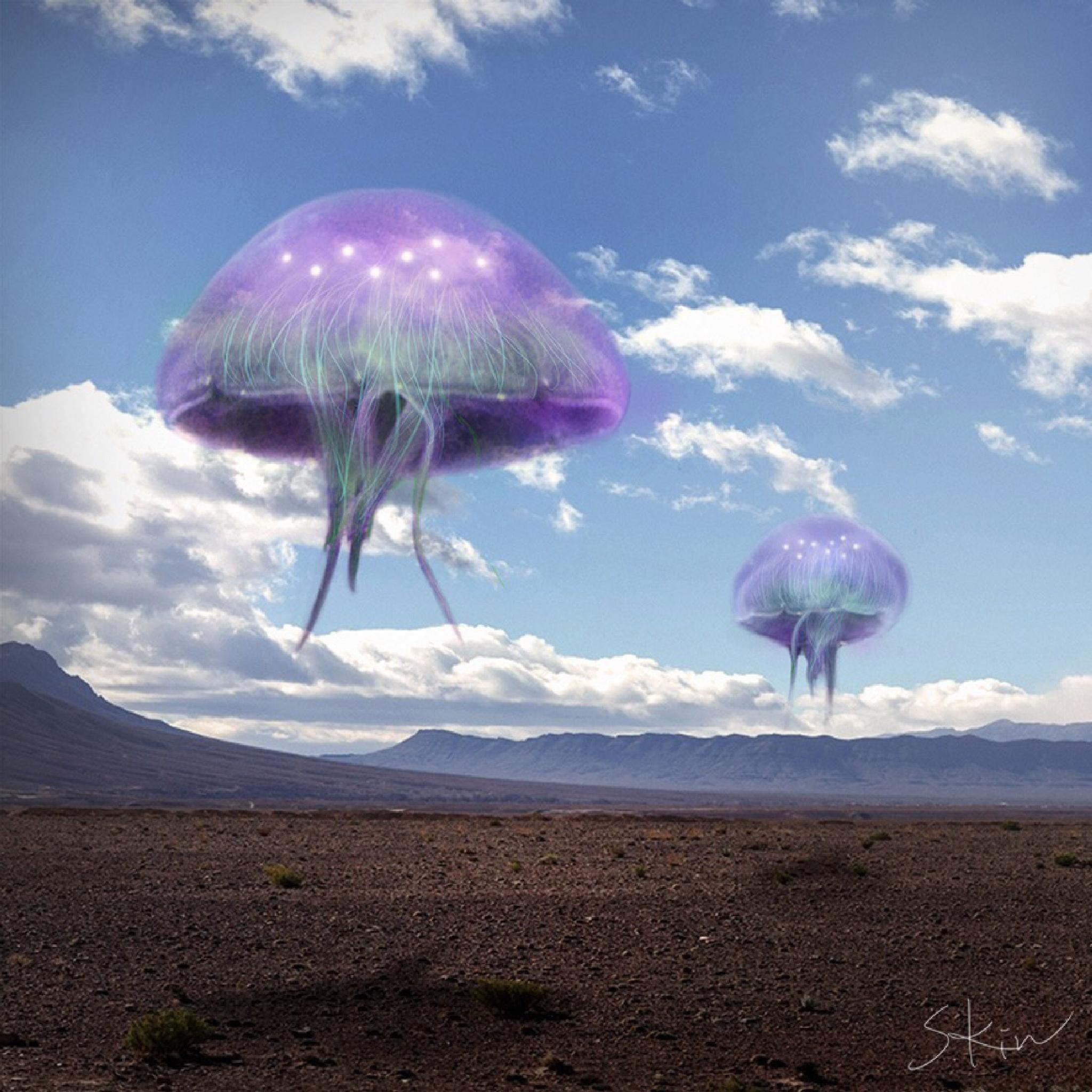 Jellyfish by Surrealism -Steven Kin