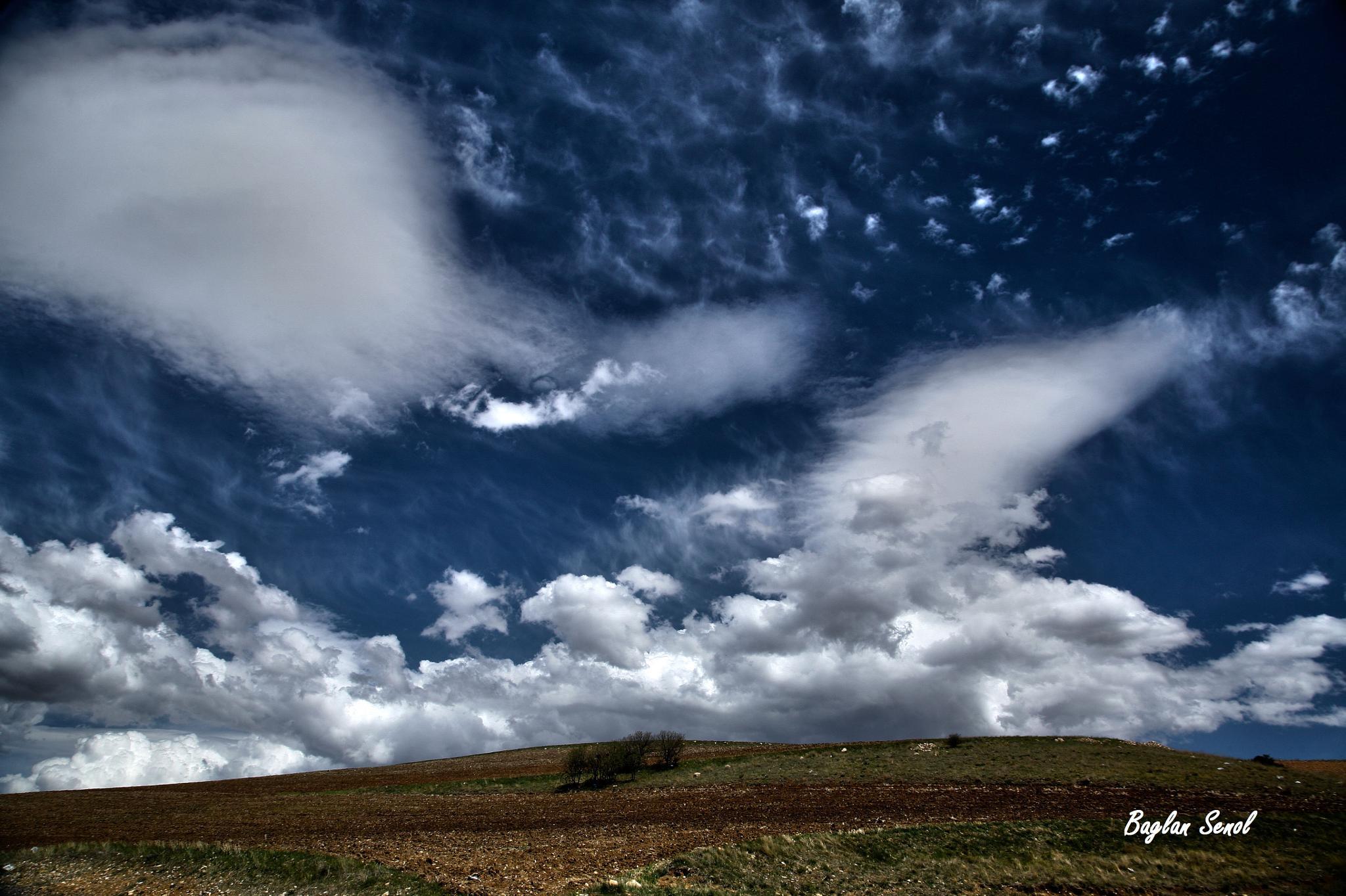 Photo in Landscape #landscape #clouds #sky #trees