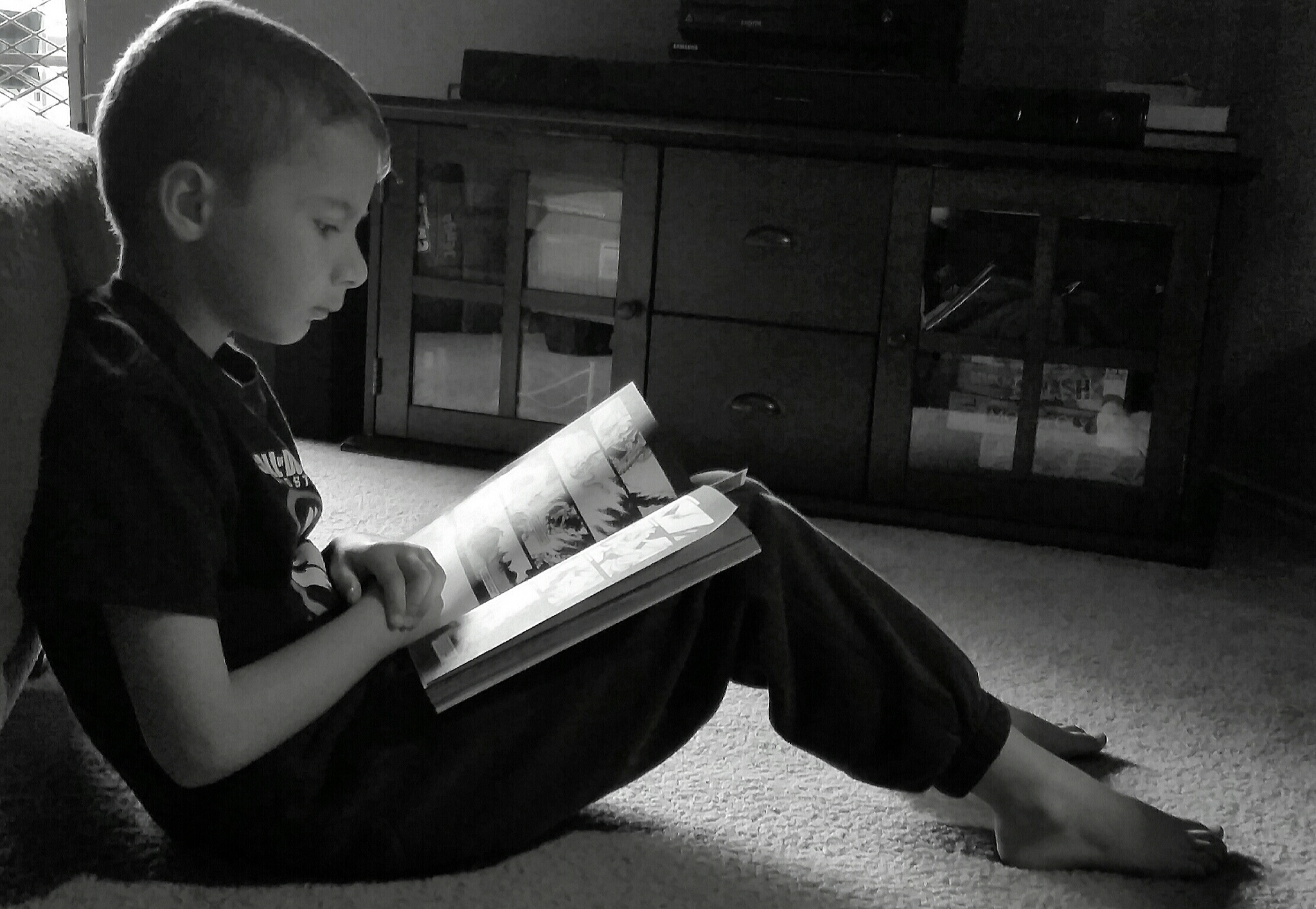 My Reader.  by Toni Cronkrite