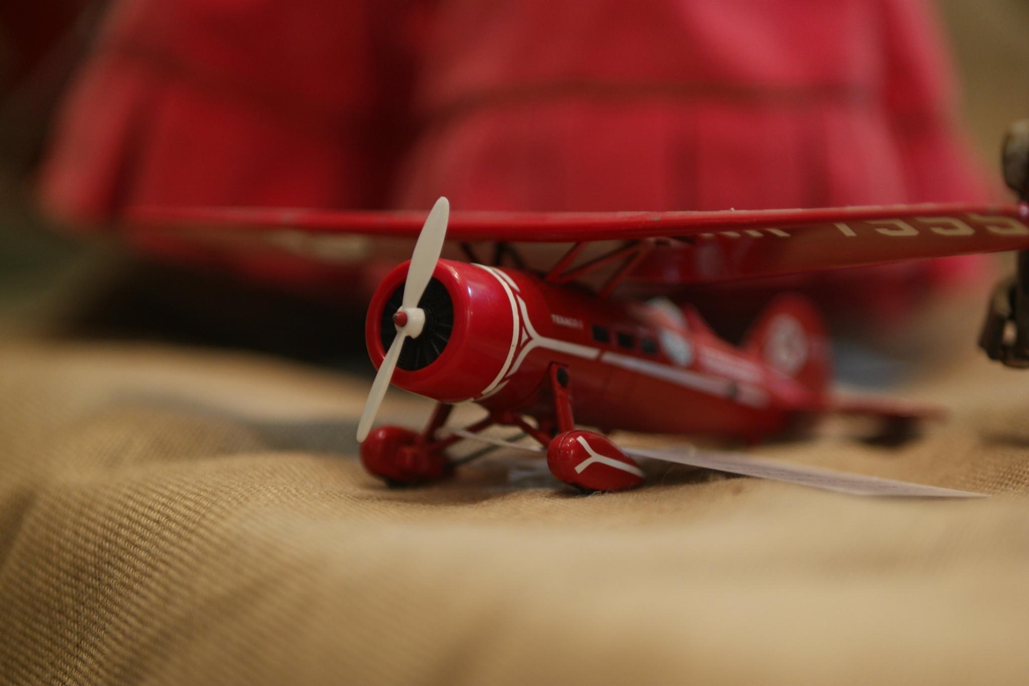 Red Plane by Tiki Tim