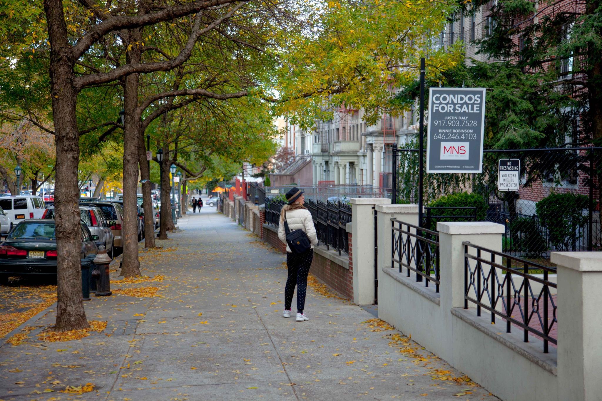 Brooklyn, New York City by mzpasic