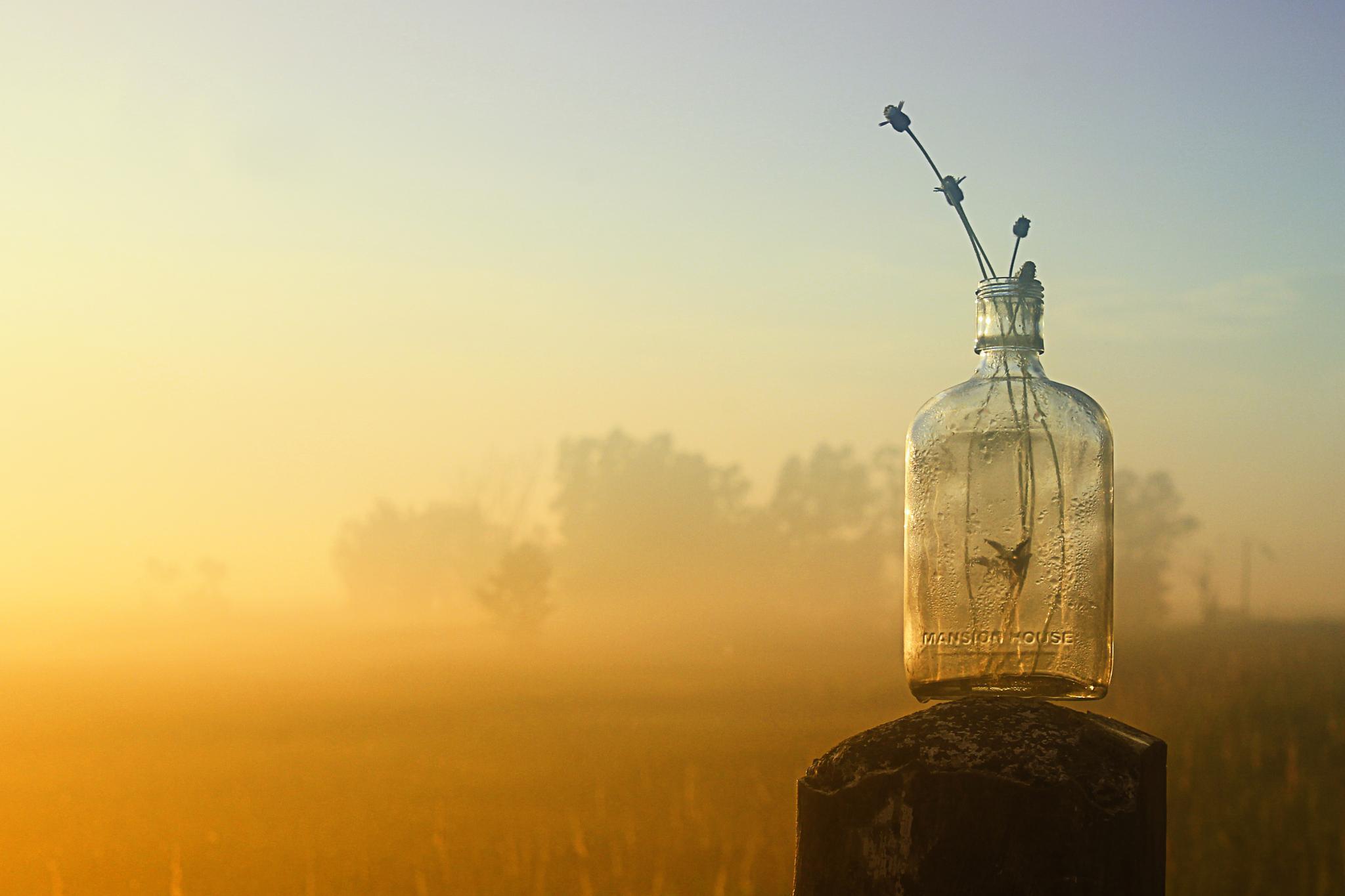 bottle by halimqomarudin