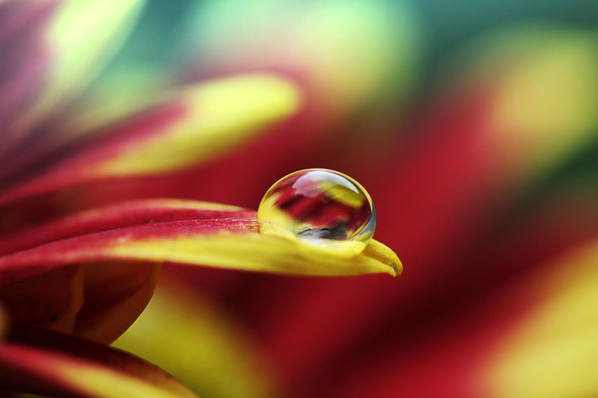 waterdrop by halimqomarudin