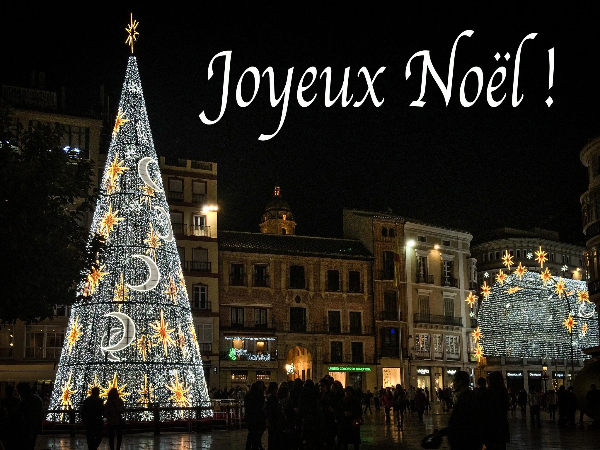 Merry Christmas  by paulinecheyrouze3