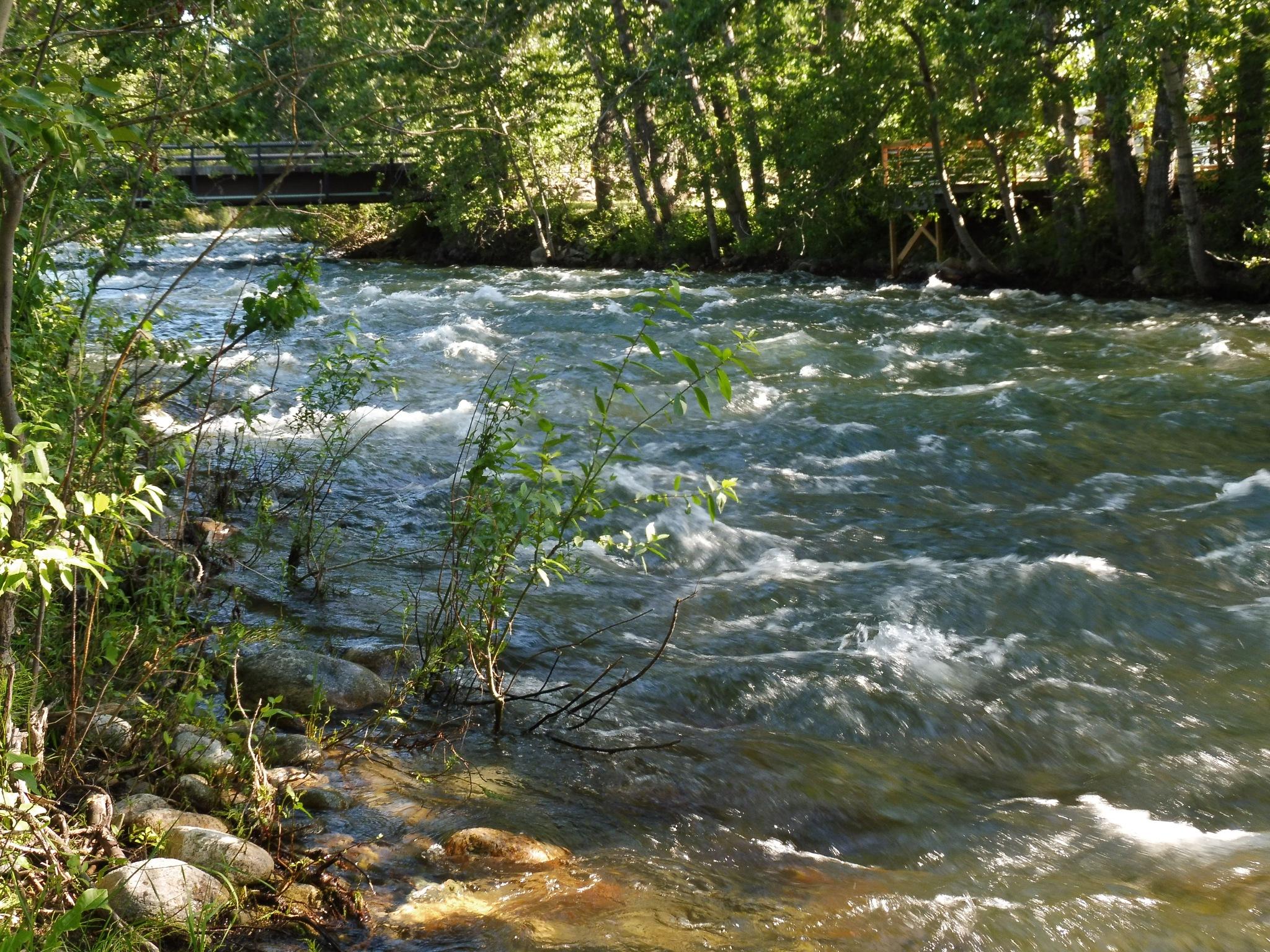 Rock Creek by tkessel