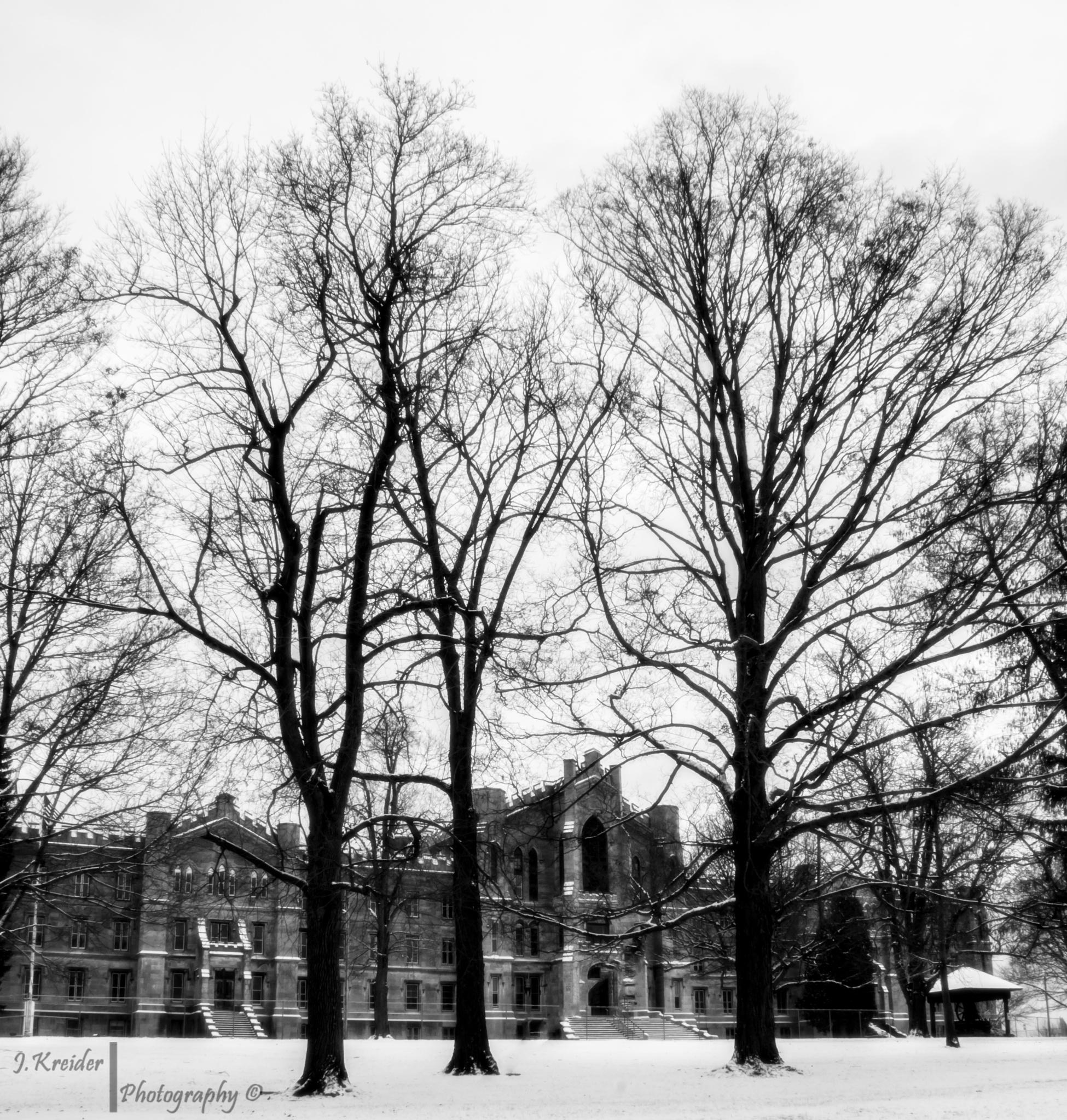 New York State Inibriate Asylum by Jeffrey Lee Kreider