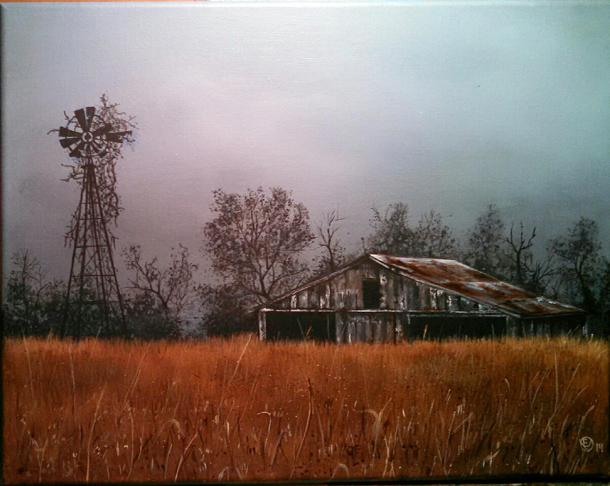 """amber waves"" by Steve Umbaugh"
