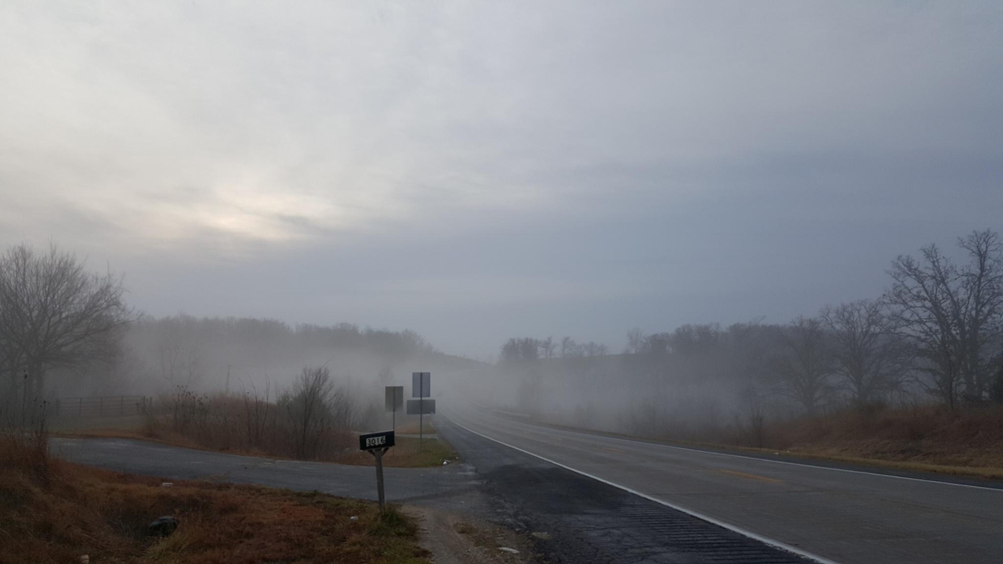 foggy valley by Steve Umbaugh