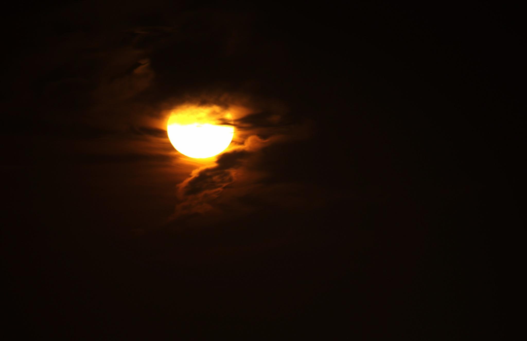 Moon Light.. by Roland Lavigne