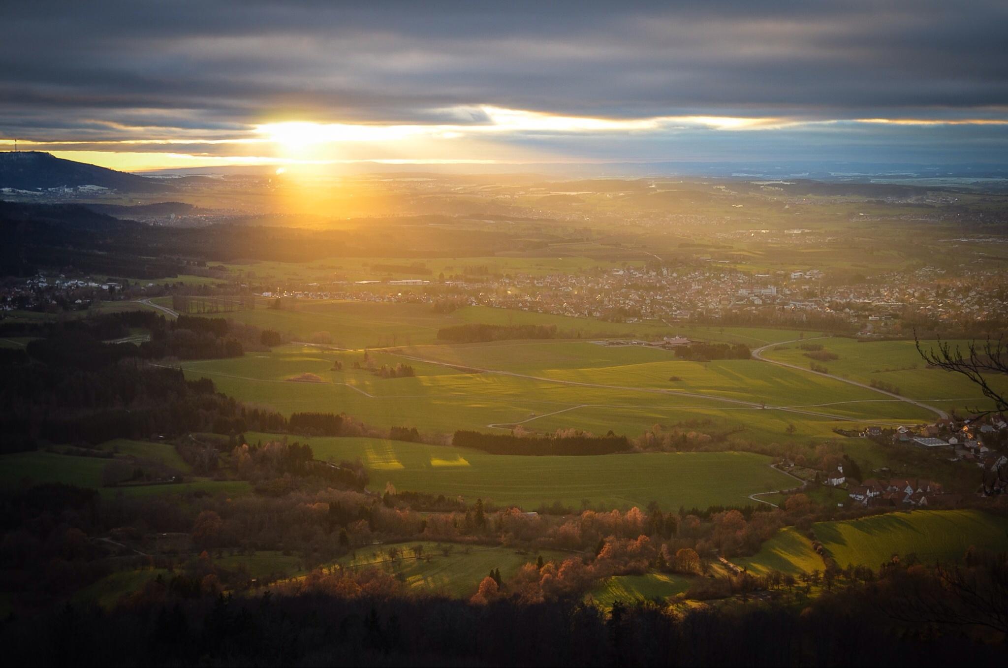 Golden rays of sunshine! by pravnisha