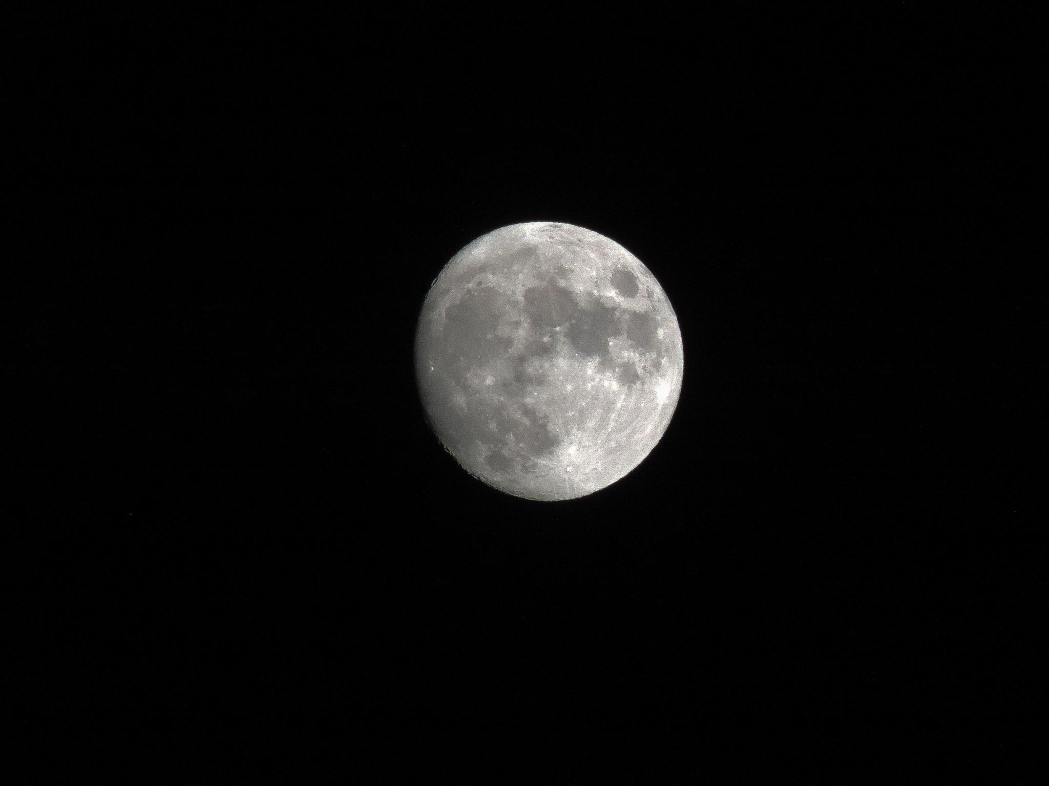 Moon by Dan Wright