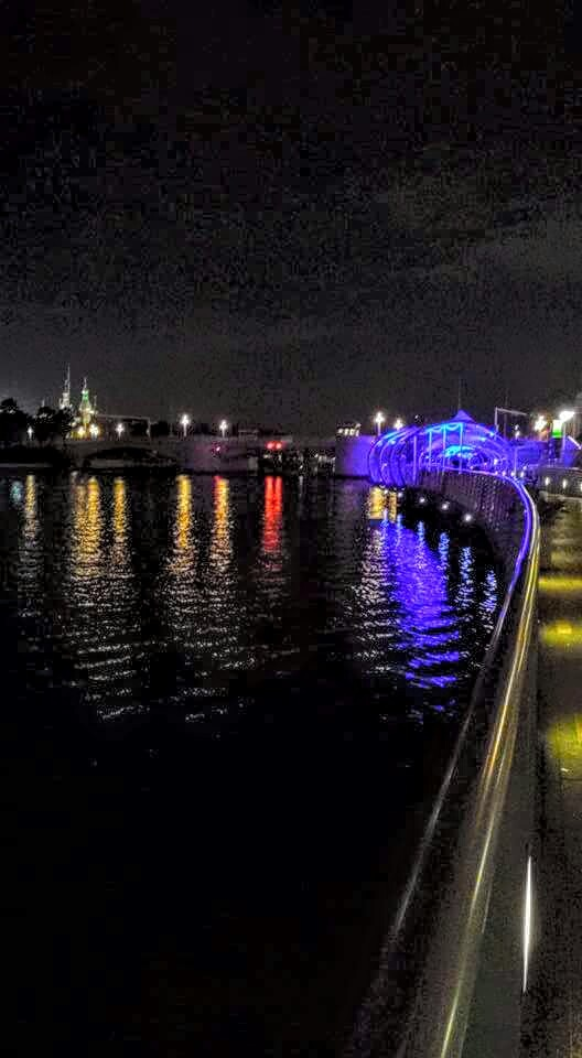 Riverwalk tampa by Dawn Smith