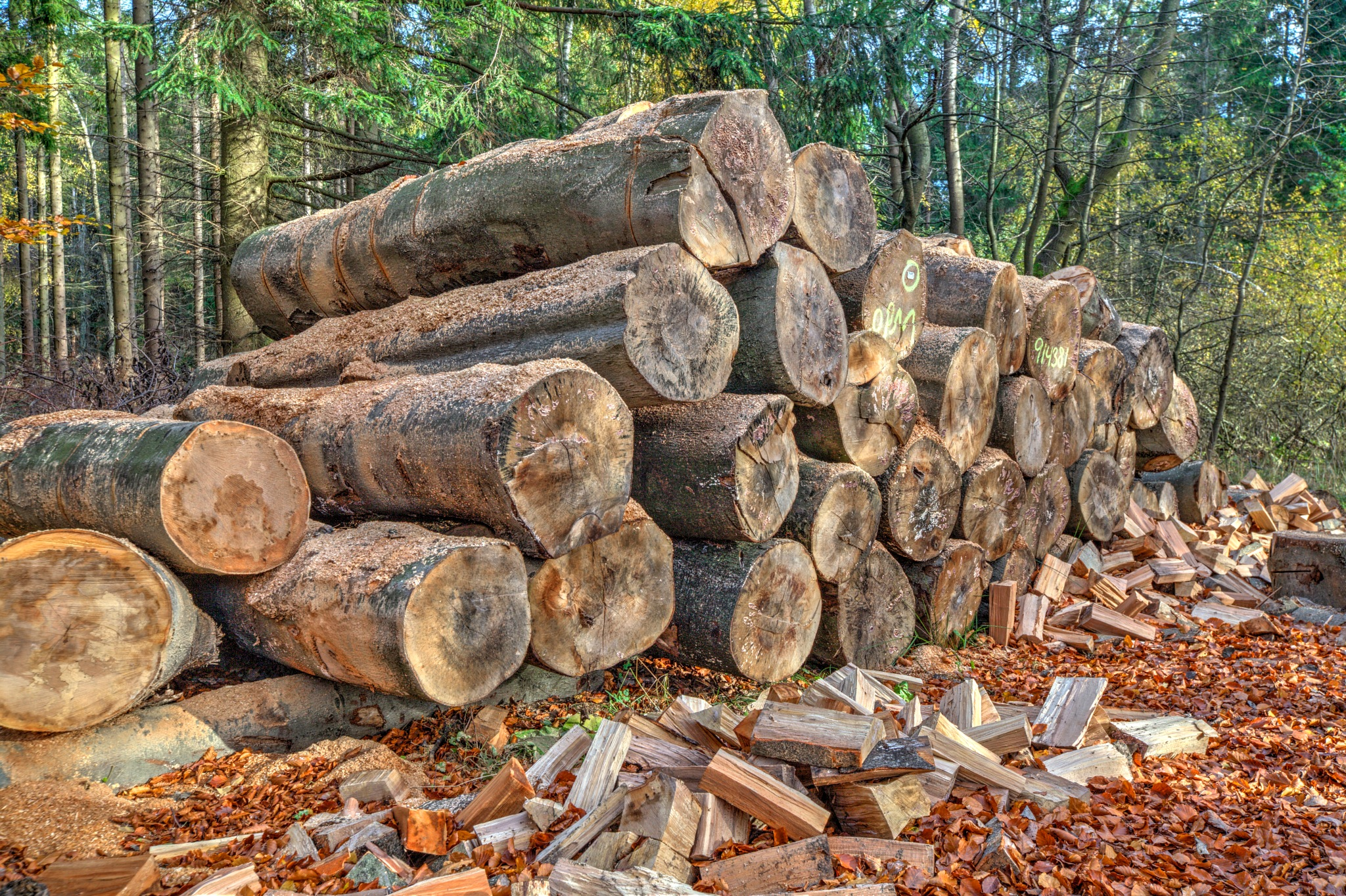 logs by guyber