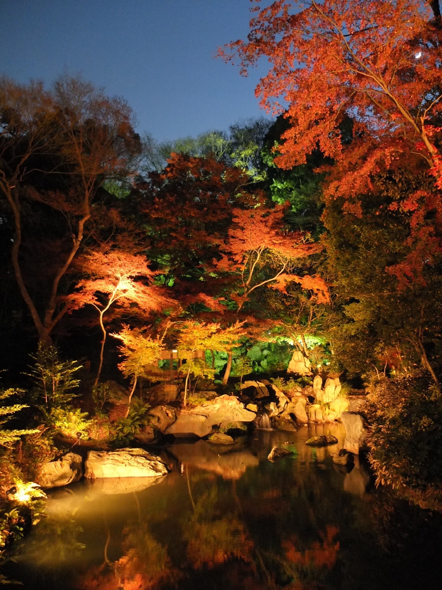 Tokyo at night by Brian Rudder