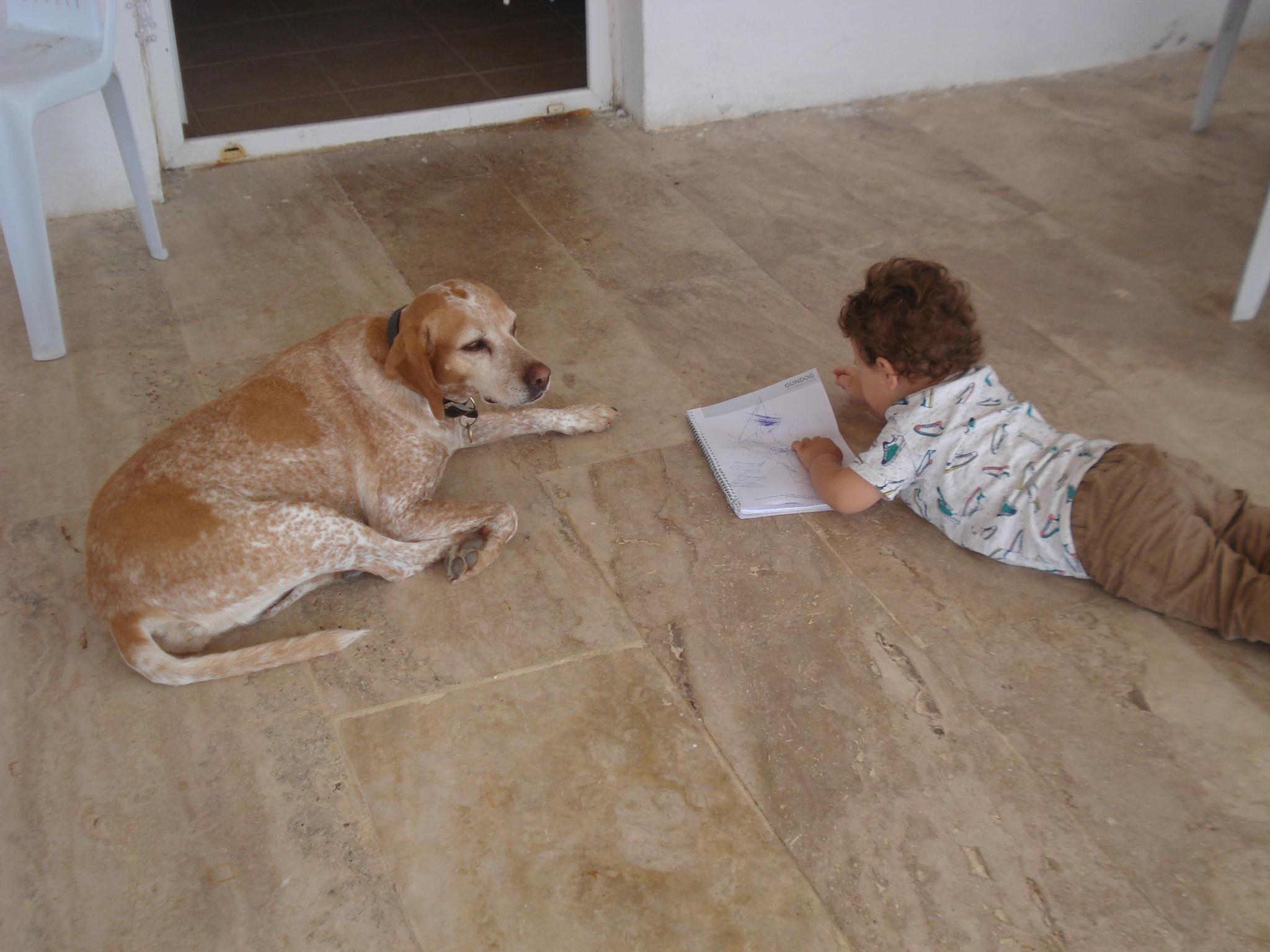 ...  DOG  FRIEND  ... by GÜVEN YENERSOY