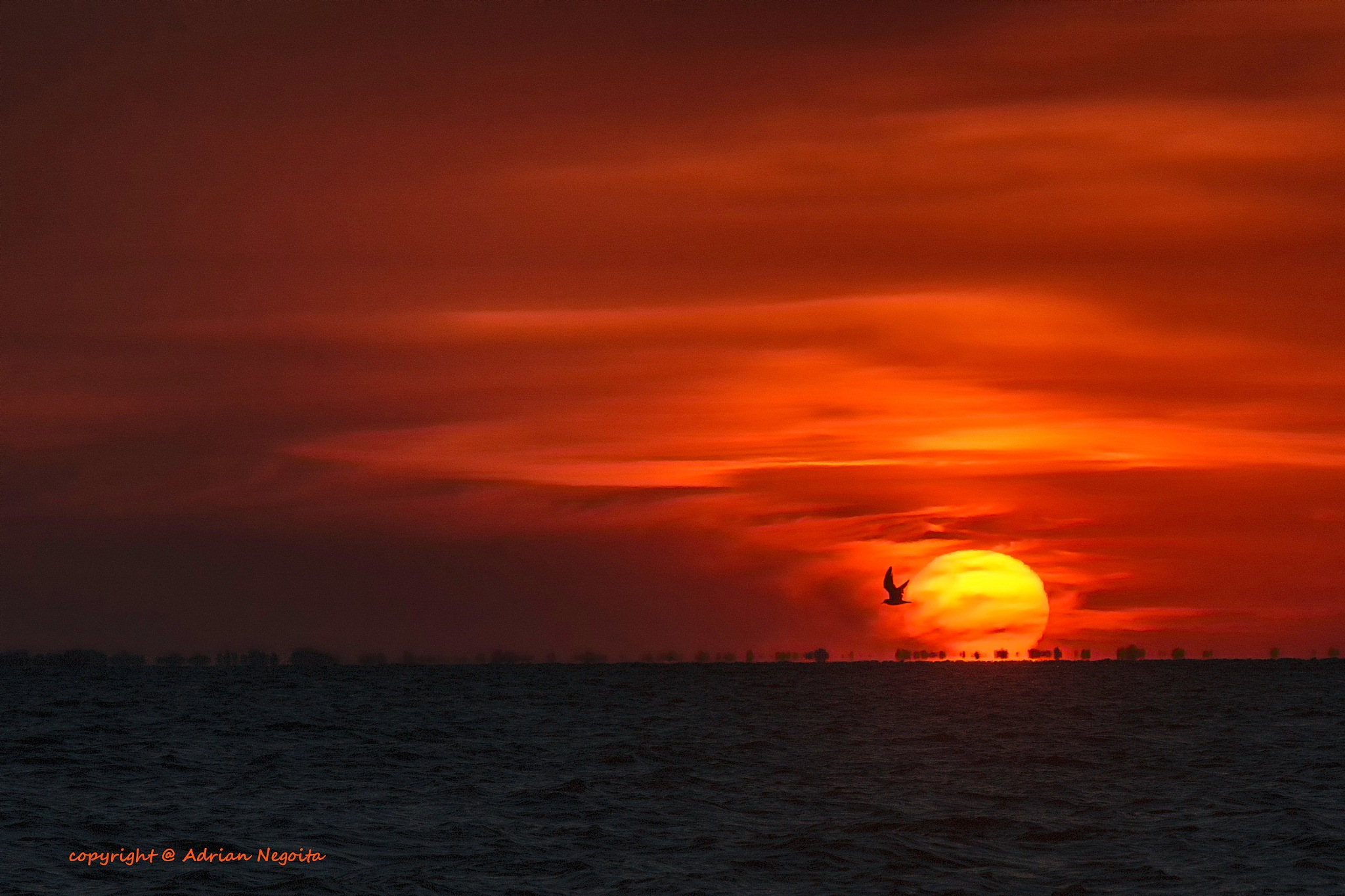 Sunset on Razelm Lake , Romania by adrianegoita