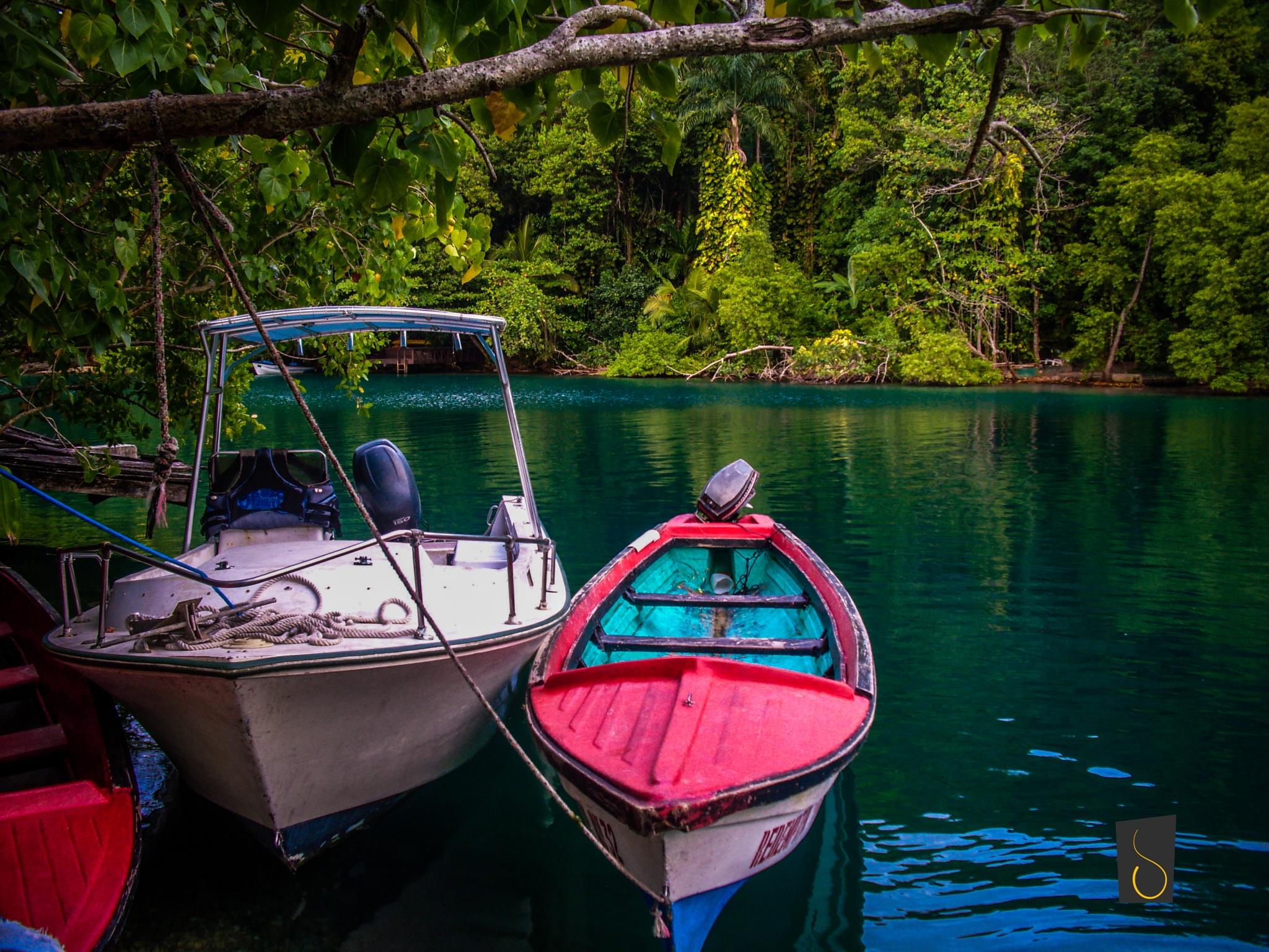 Blue Lagoon, Portland Jamaica by Caston Redwood Jr.