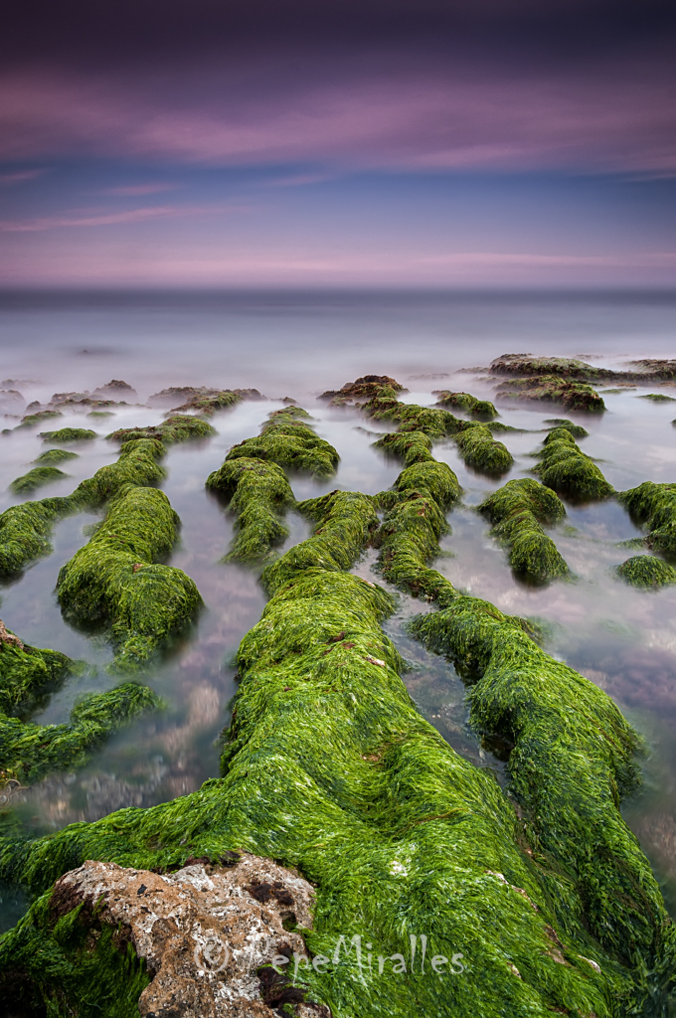 Green by pepemiralles