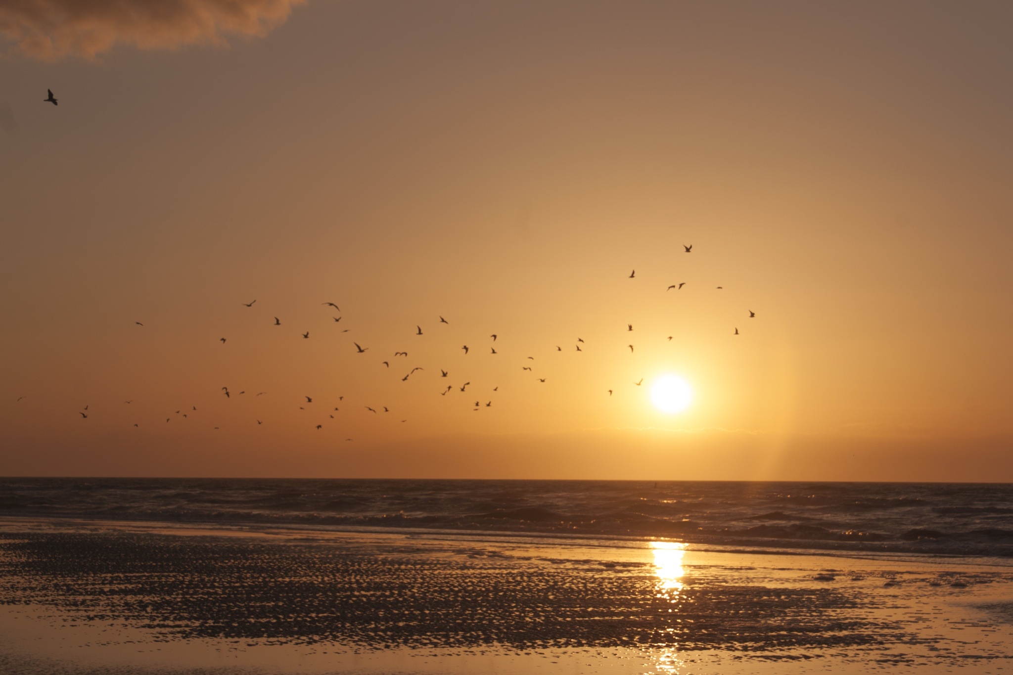 Sunset by Mie Vanmarcke
