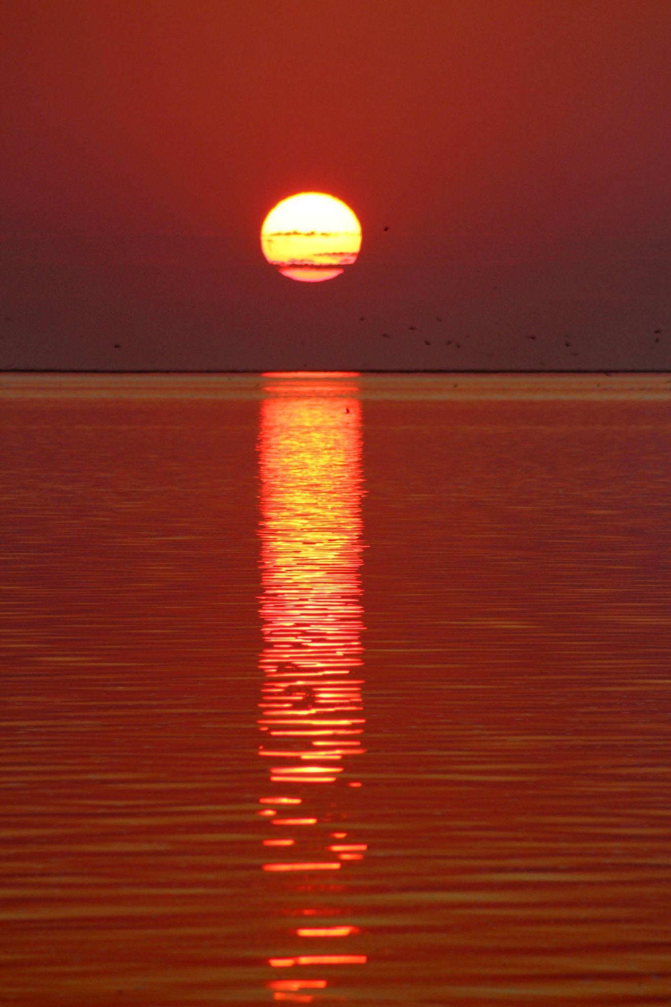 Sunset by Jo-Ann de Smit