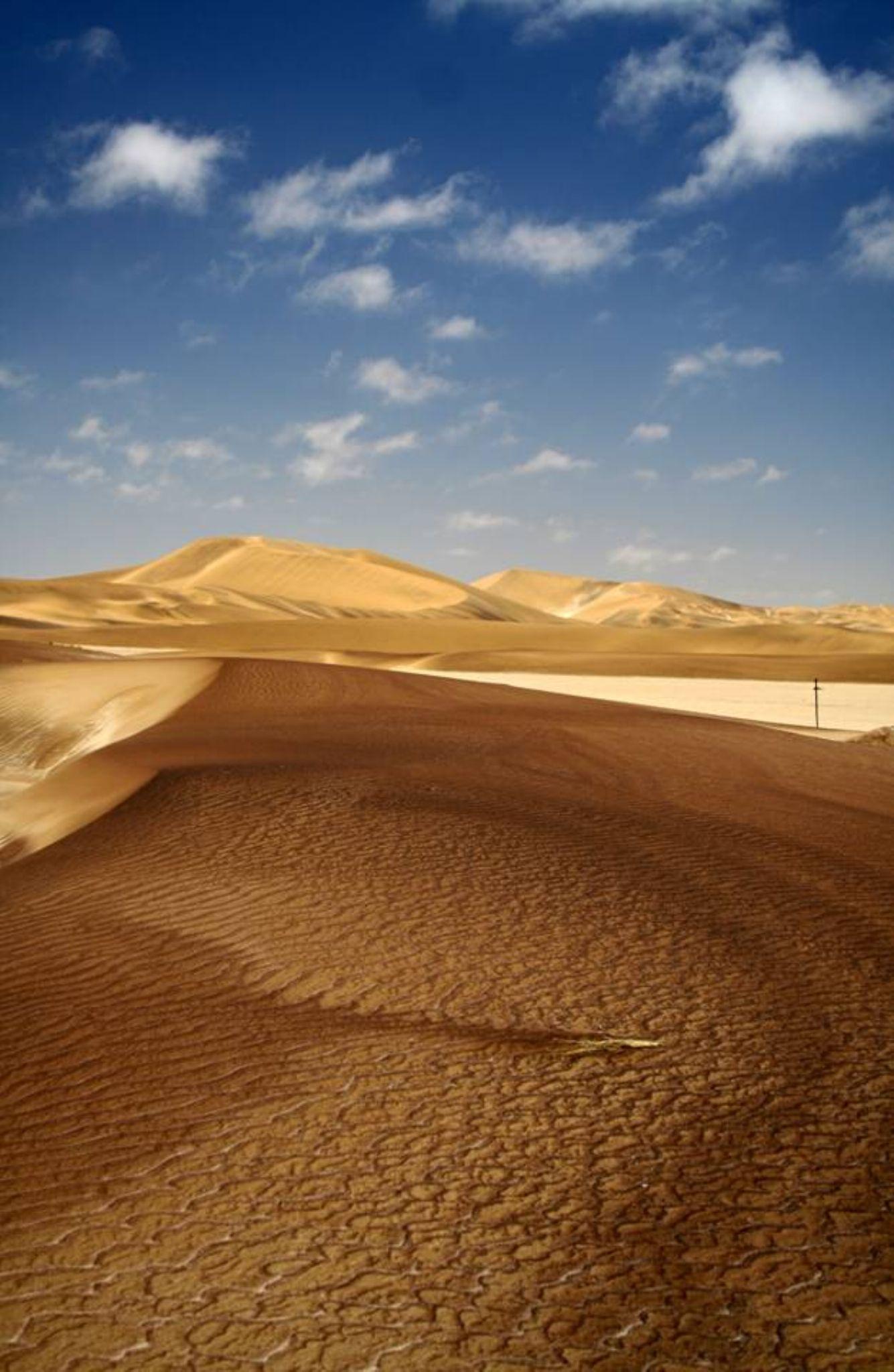 Dunes by Jo-Ann de Smit