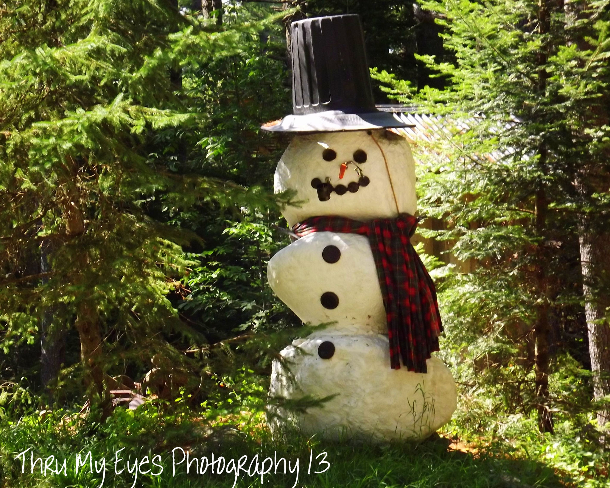 The Year Round Snowman by captain