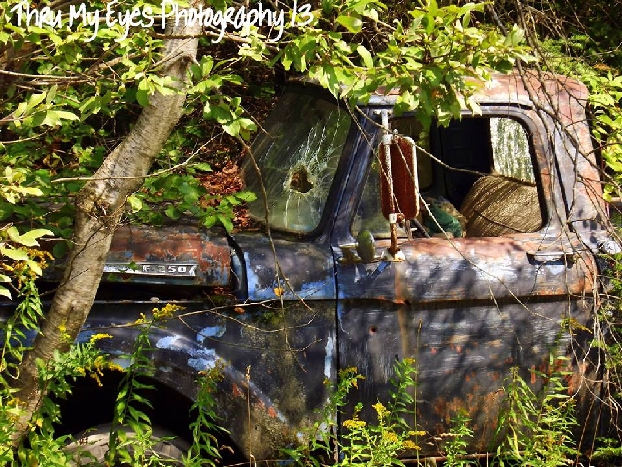 Old Ford by captain