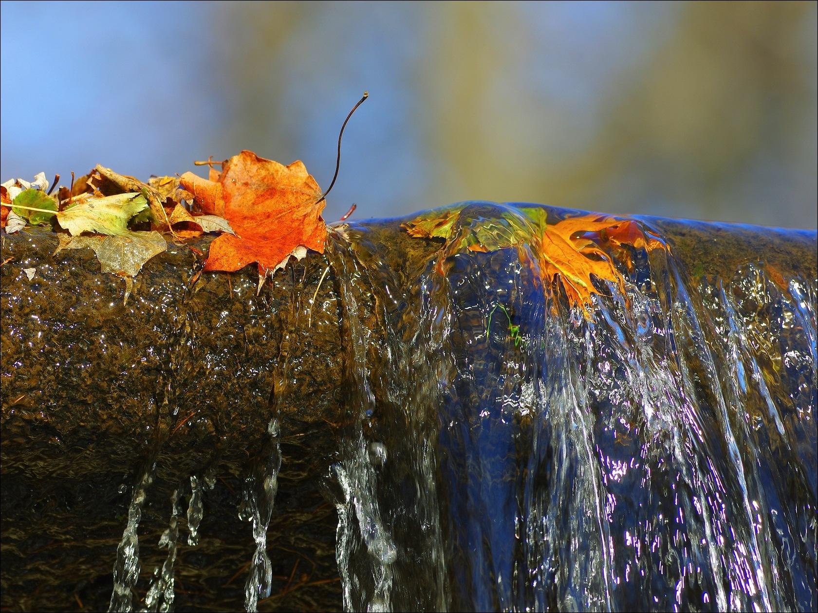 Petite cascade by Fernand Larochelle