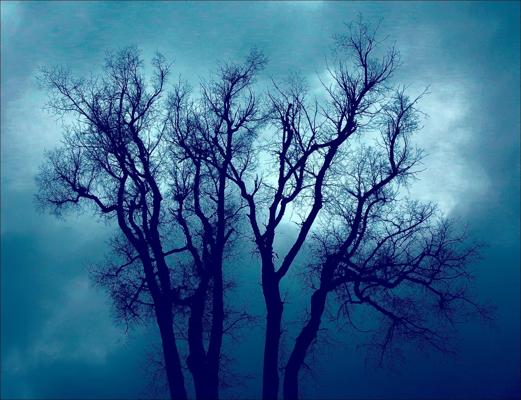 Avant l'orage by Fernand Larochelle