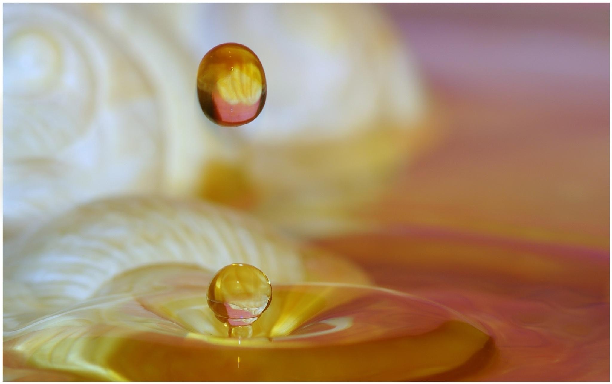 Water drop  / goutte d'eau by Fernand Larochelle