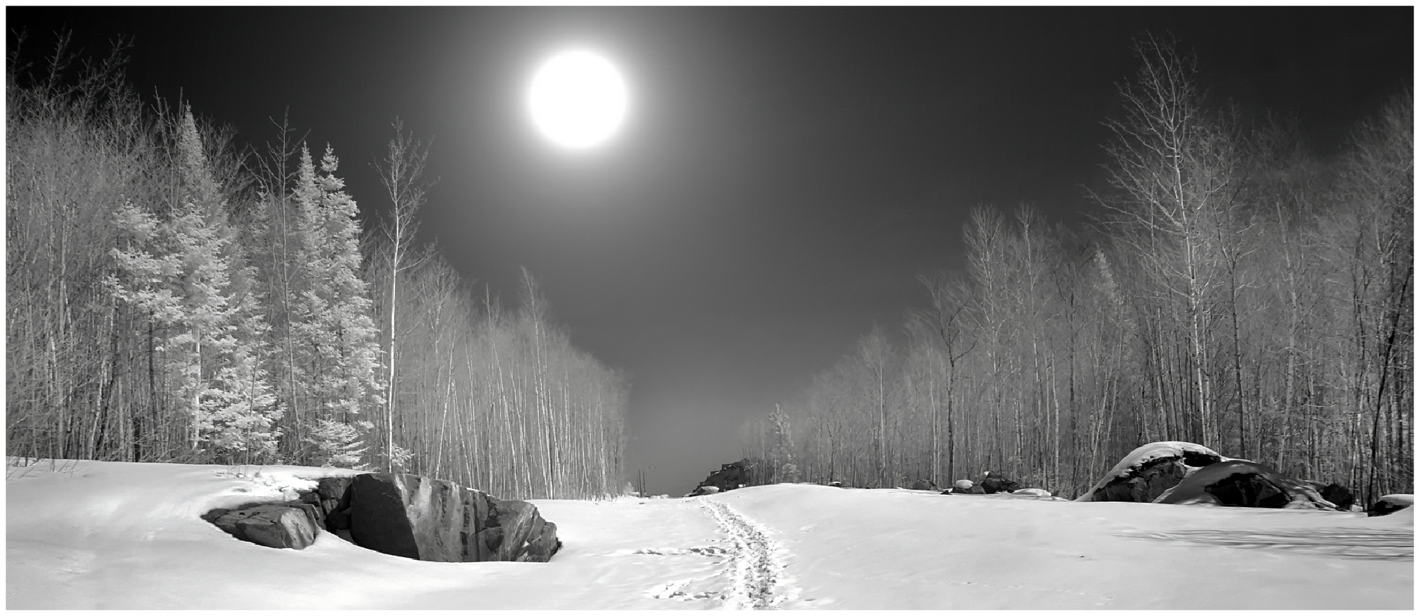 Chemin dans la neige by Fernand Larochelle