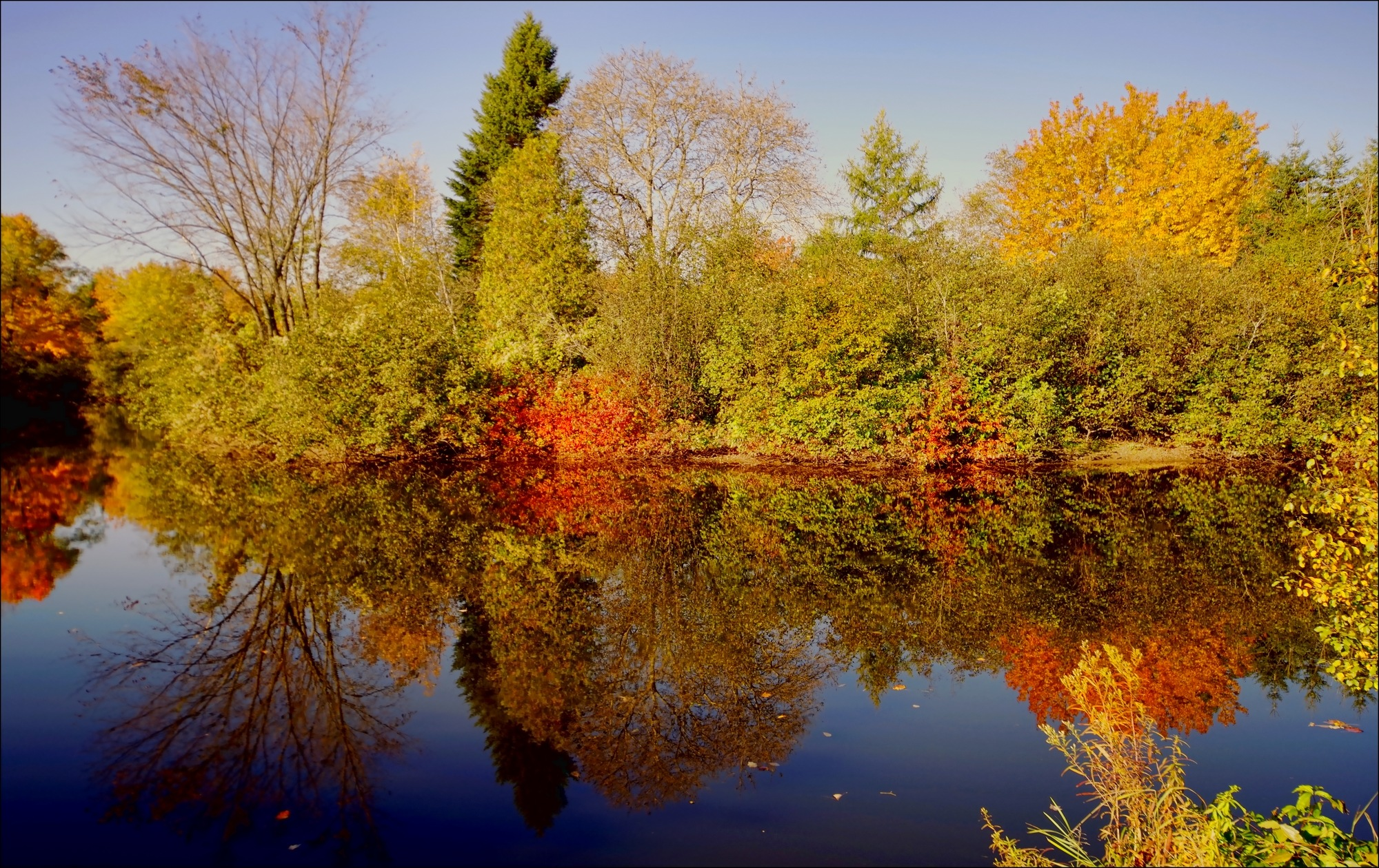 Reflets d'automne by Fernand Larochelle