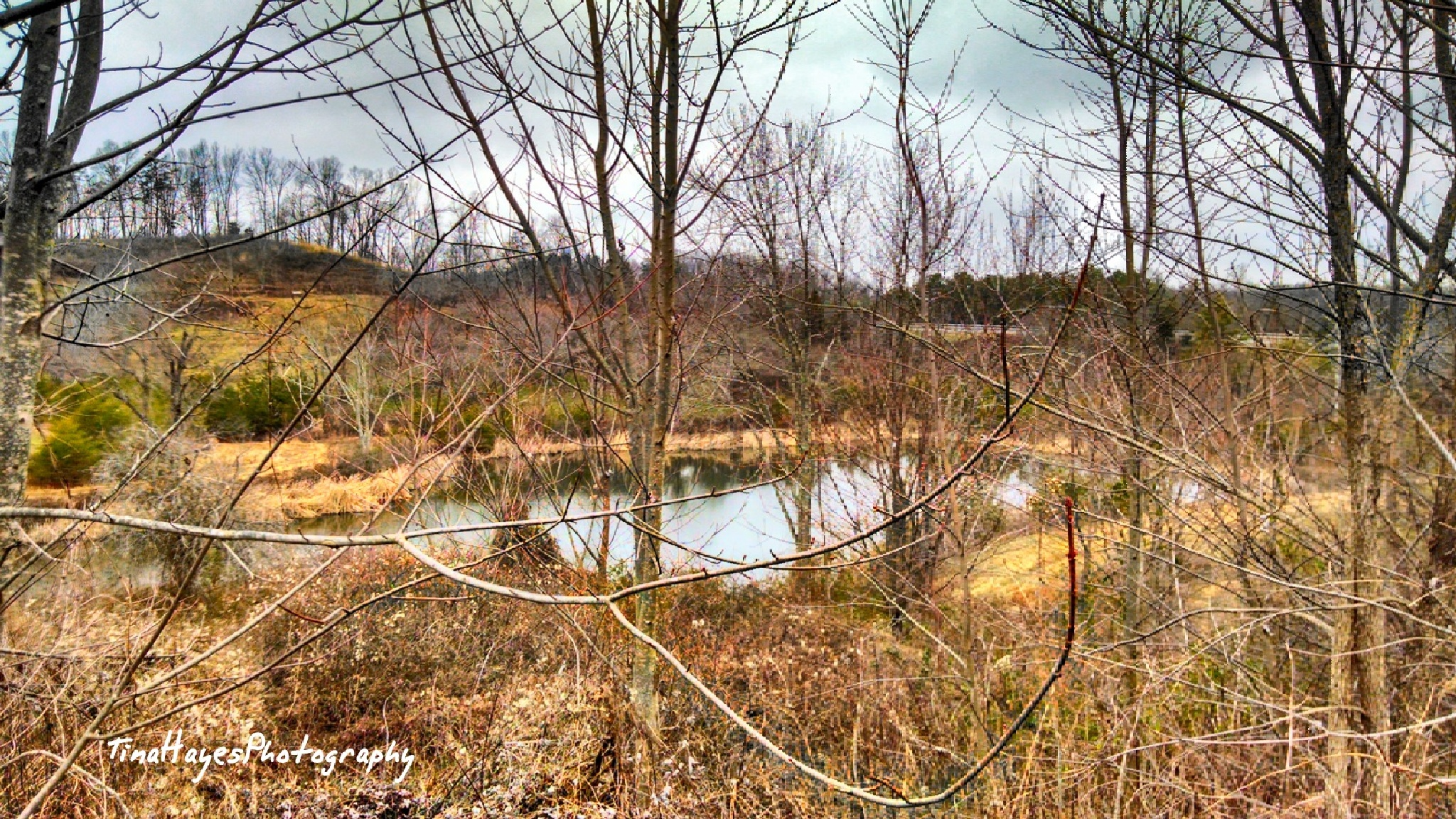 Mountain Landscape with pond by Tina Hayes