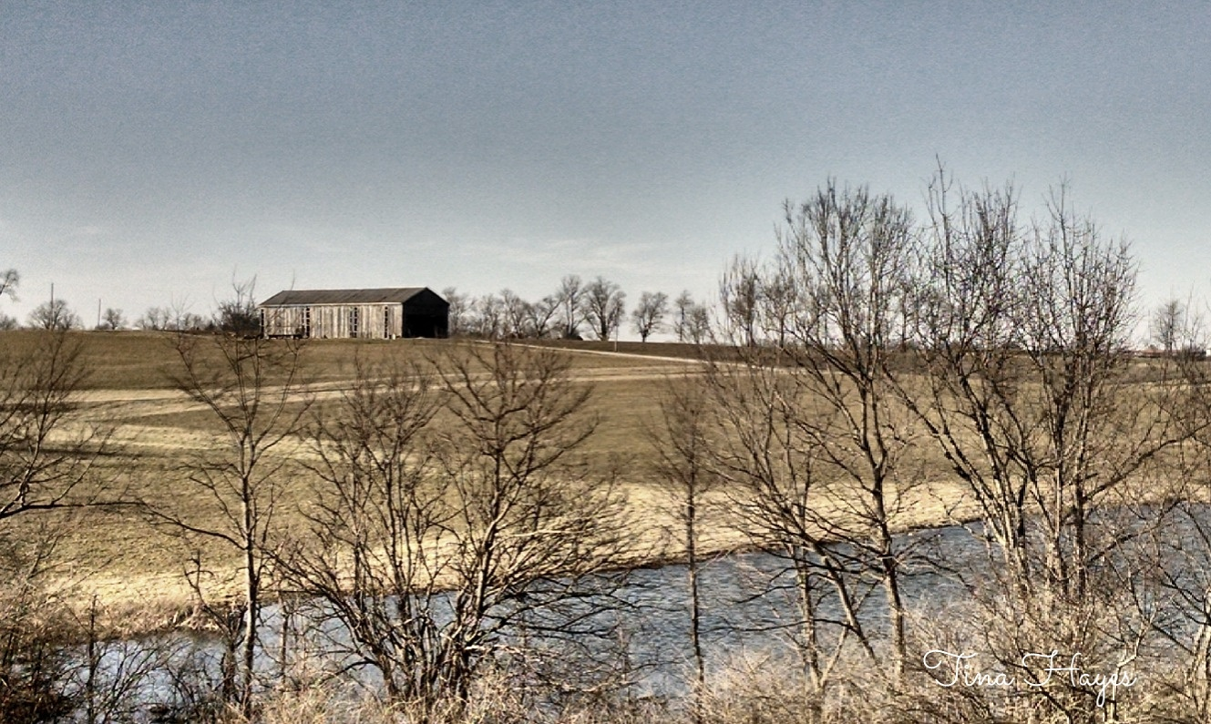 Barn outside Winchester Kentucky by Tina Hayes